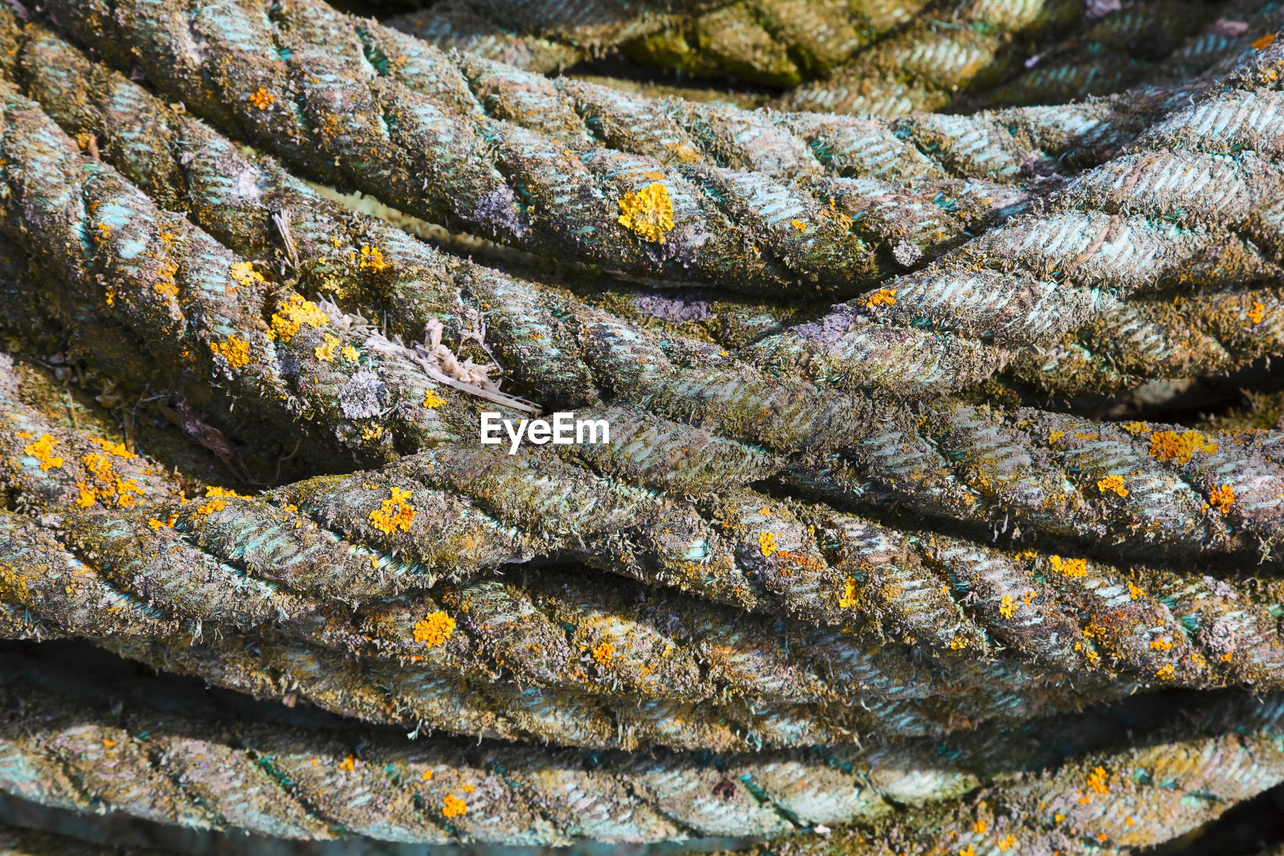 Full frame shot of weathered rope