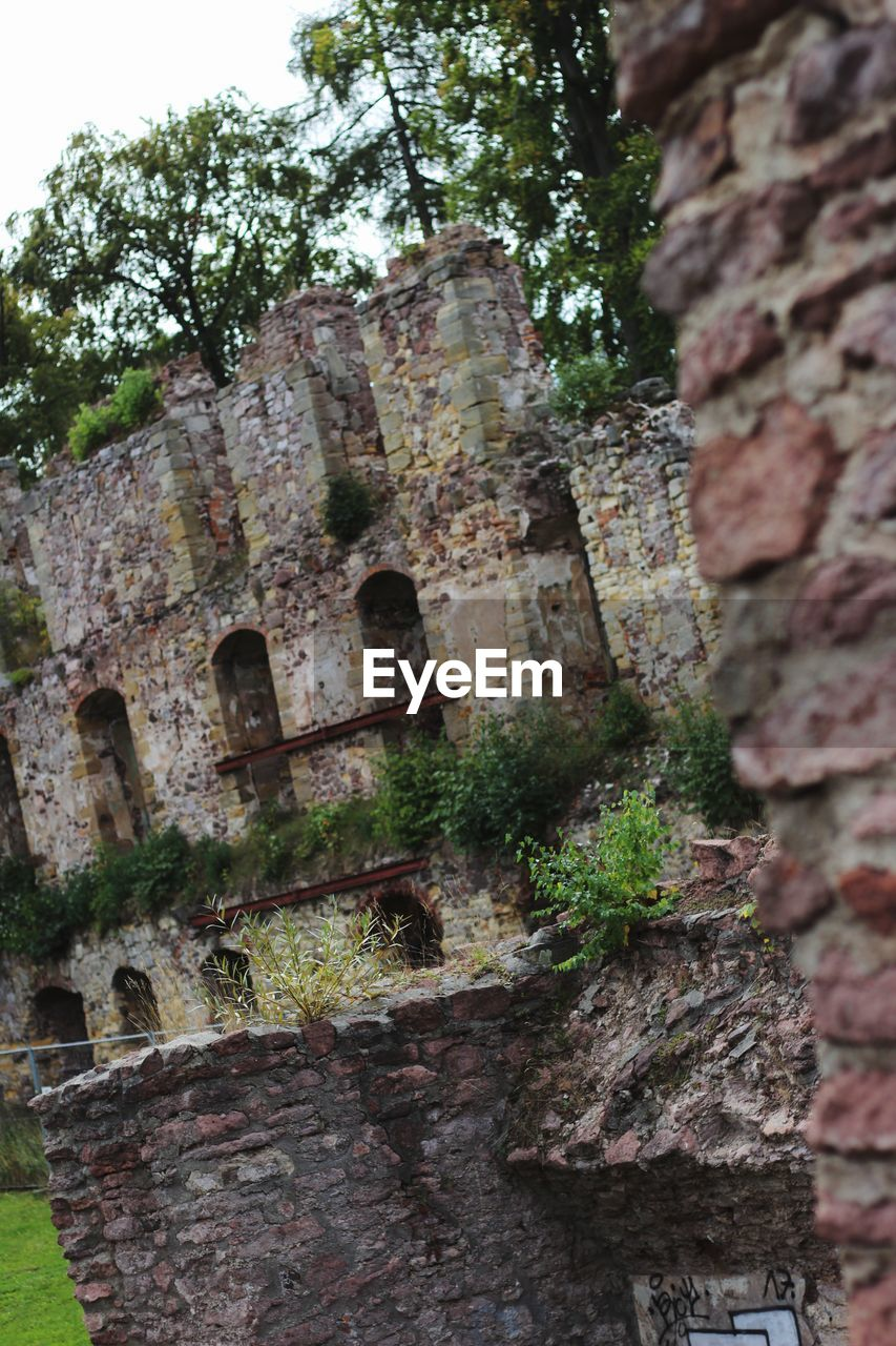architecture, built structure, old, history, the past, low angle view, old ruin, plant, building exterior, wall, no people, day, weathered, damaged, tree, abandoned, nature, ancient, brick, wall - building feature, ruined, outdoors, deterioration, stone wall, archaeology, ancient civilization