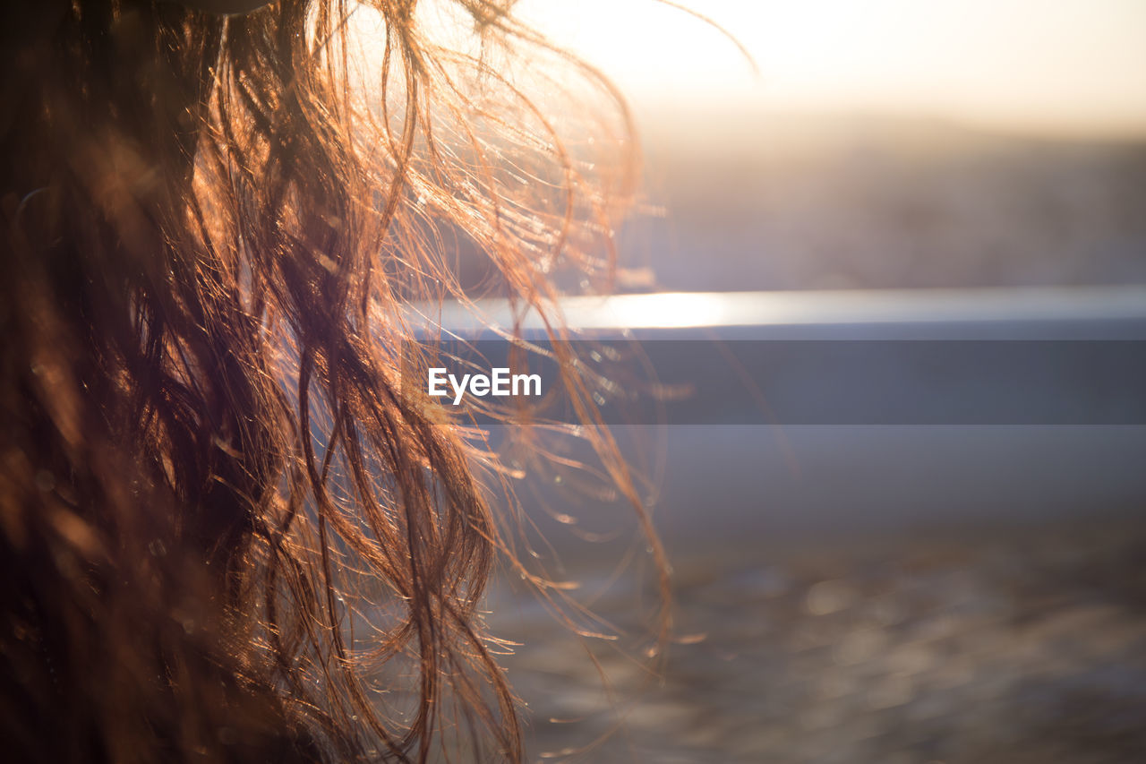 selective focus, nature, close-up, sky, sunlight, no people, day, focus on foreground, sunset, outdoors, land, hair, tranquility, water, beauty in nature, plant, field, scenics - nature, hairstyle