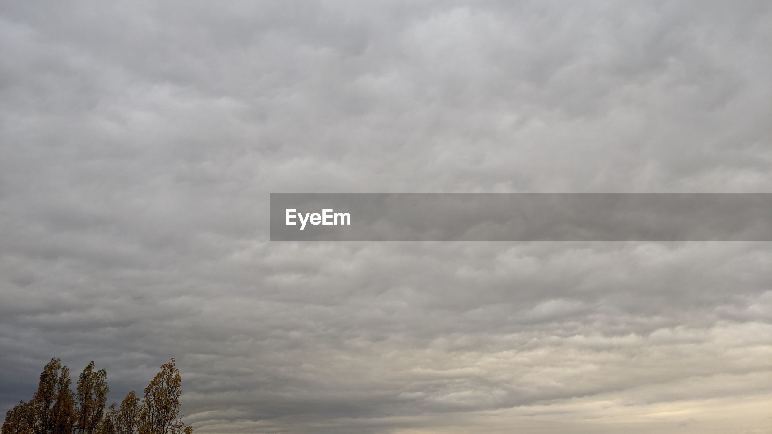 LOW ANGLE VIEW OF STORM CLOUDS OVER DRAMATIC SKY
