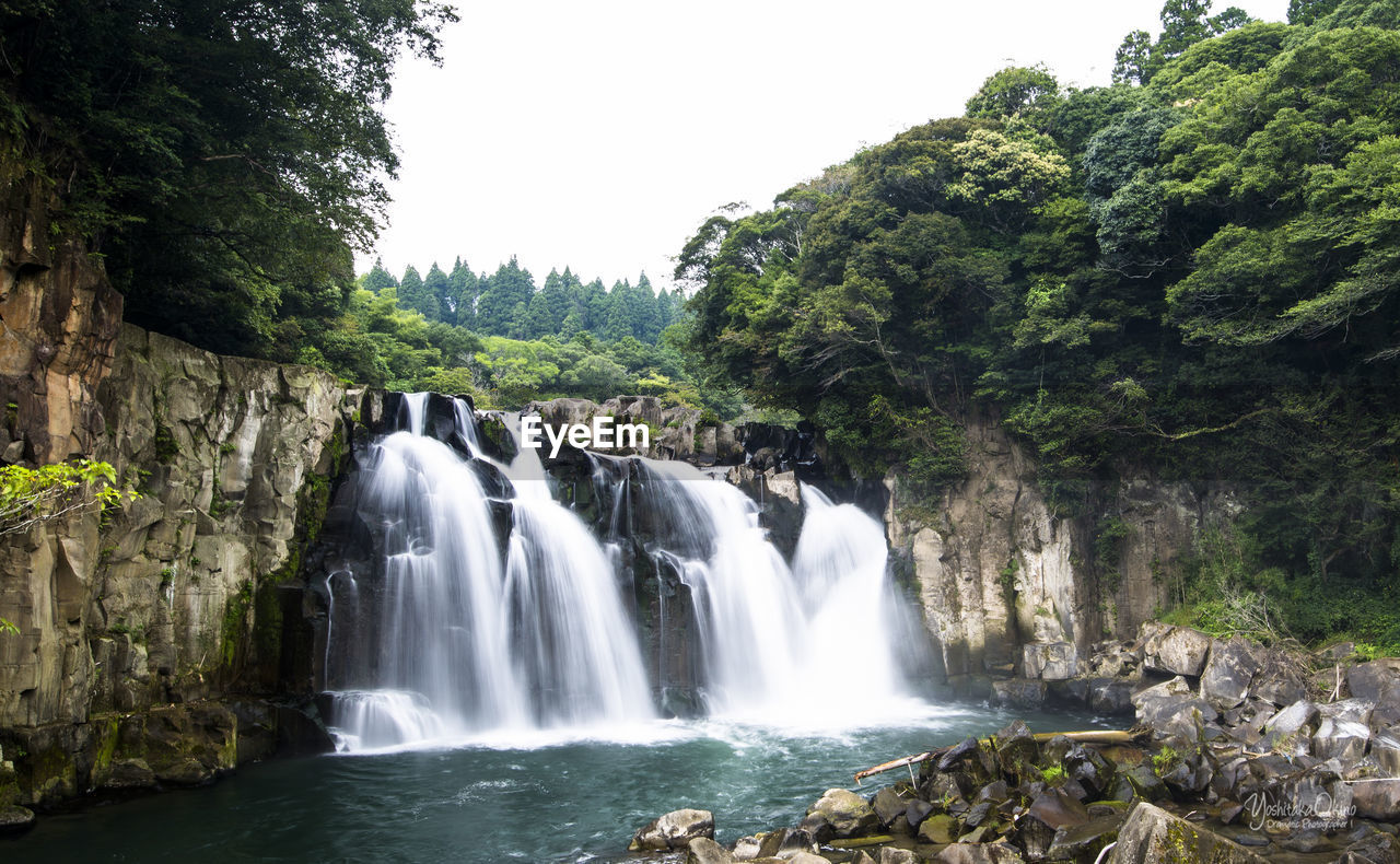 tree, water, waterfall, plant, scenics - nature, beauty in nature, motion, flowing water, forest, land, nature, long exposure, environment, blurred motion, day, growth, no people, outdoors, sky, power in nature, flowing, rainforest