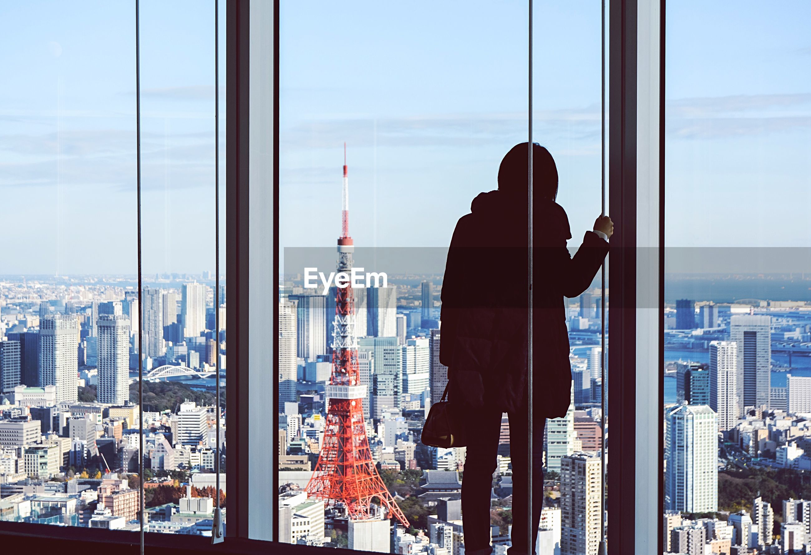Rear view of woman standing by window against tokyo tower in city