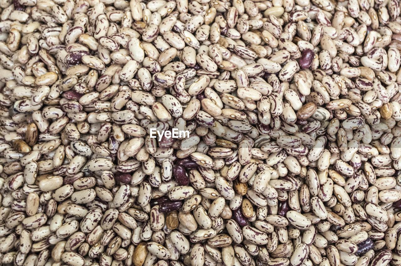 Full frame shot of pinto beans