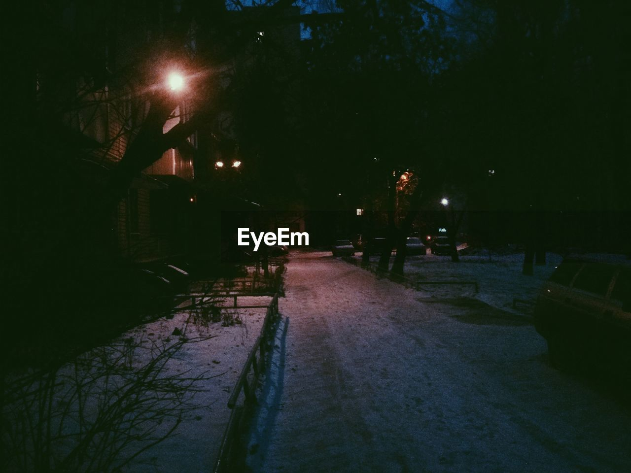 night, illuminated, street light, outdoors, tree, no people, road, nature, snow, building exterior, architecture, city, sky
