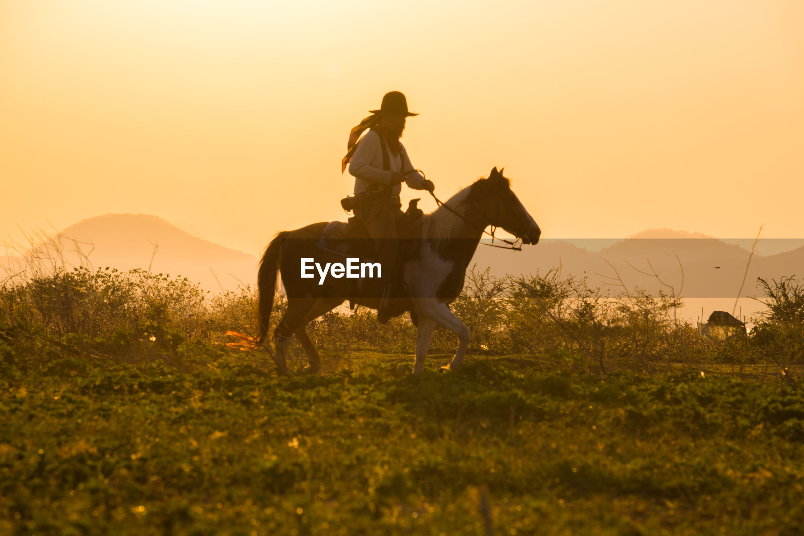 Man riding horse on grass against sky during sunset