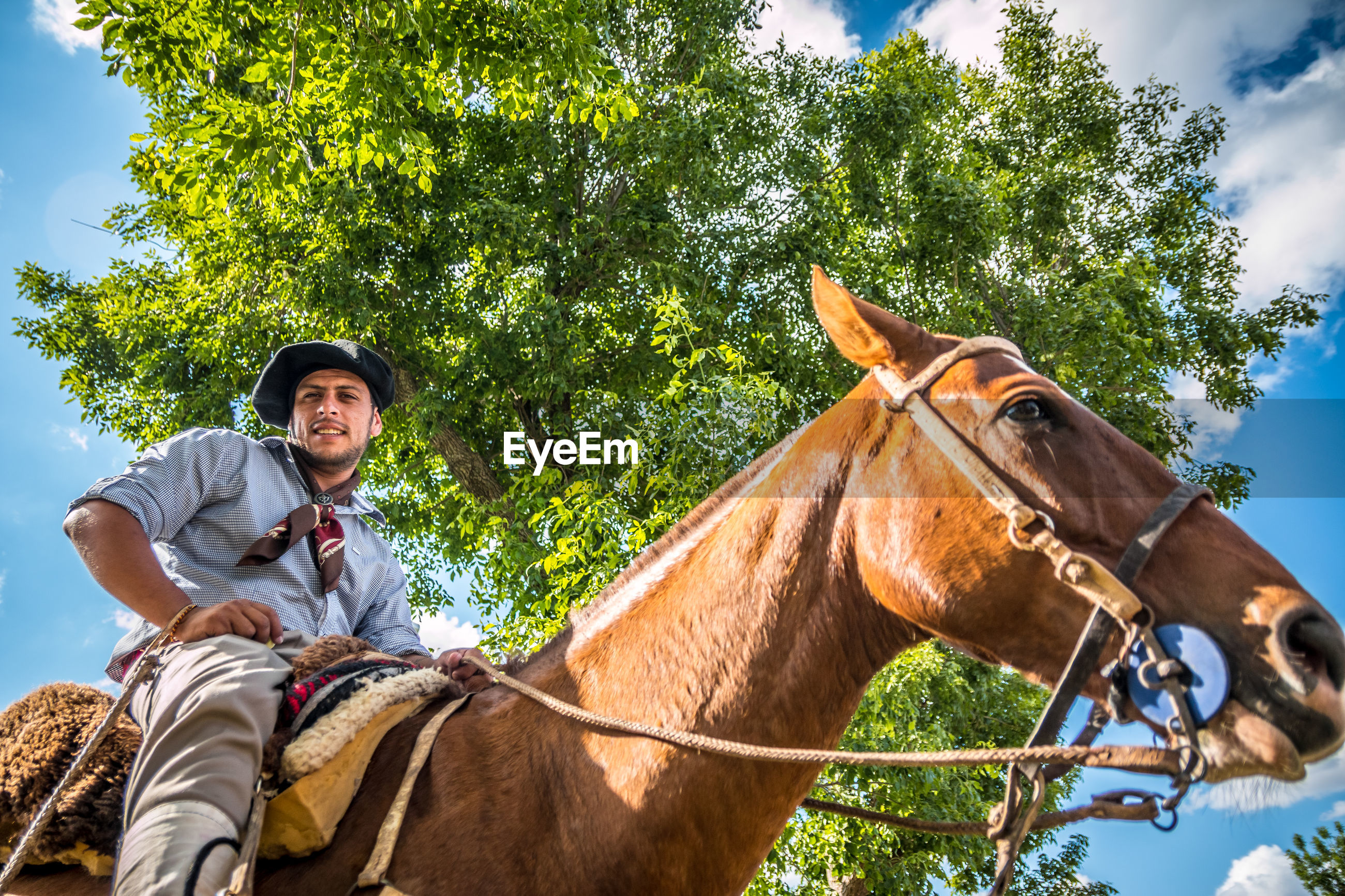 Low angle portrait of man riding horse