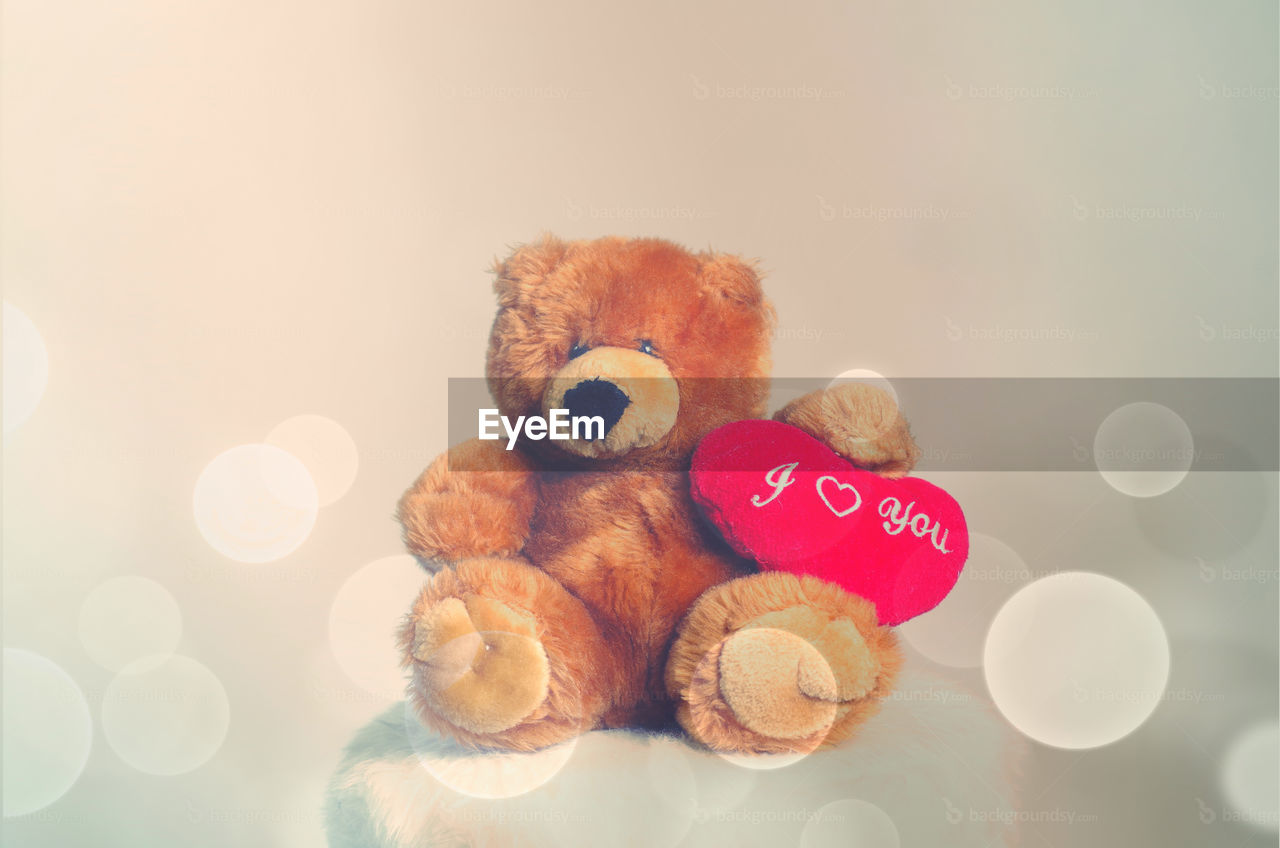 teddy bear, still life, stuffed toy, text, no people, toy, childhood, indoors, communication, close-up, celebration, white background, day