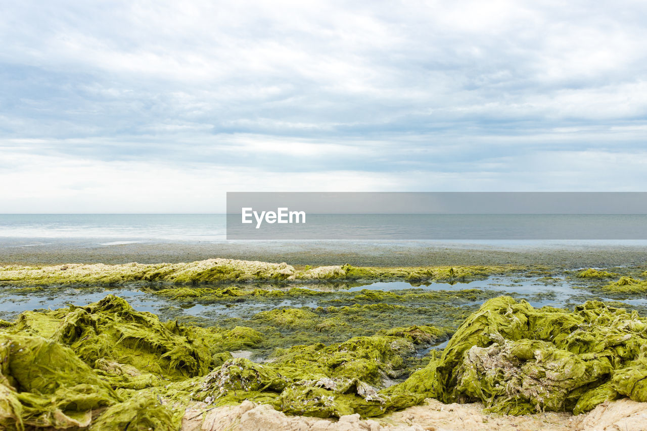 SCENIC VIEW OF SEA BY BEACH AGAINST SKY