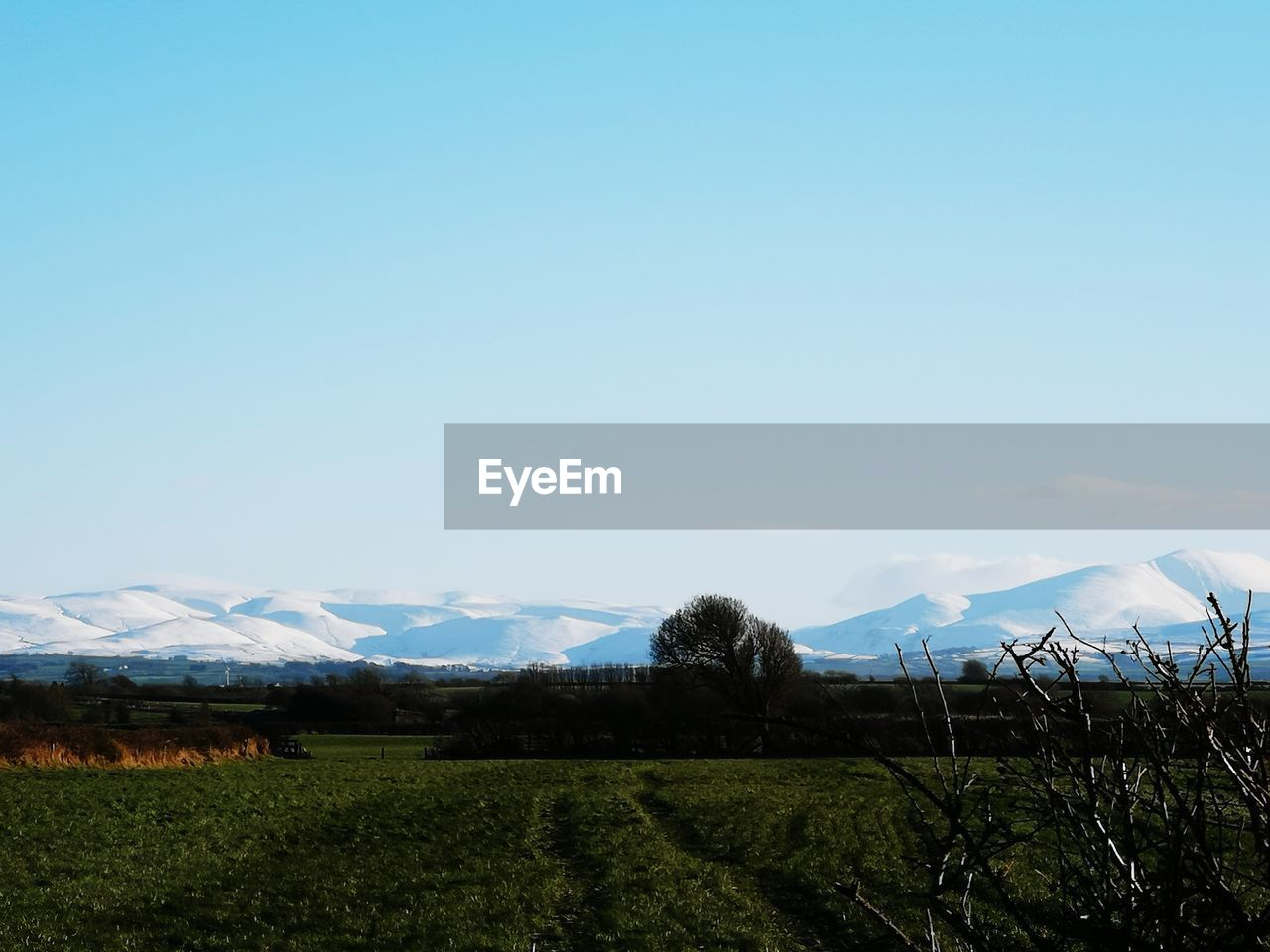 sky, landscape, mountain, scenics - nature, environment, beauty in nature, tranquility, tranquil scene, copy space, plant, land, field, nature, no people, non-urban scene, blue, day, mountain range, growth, idyllic, snowcapped mountain