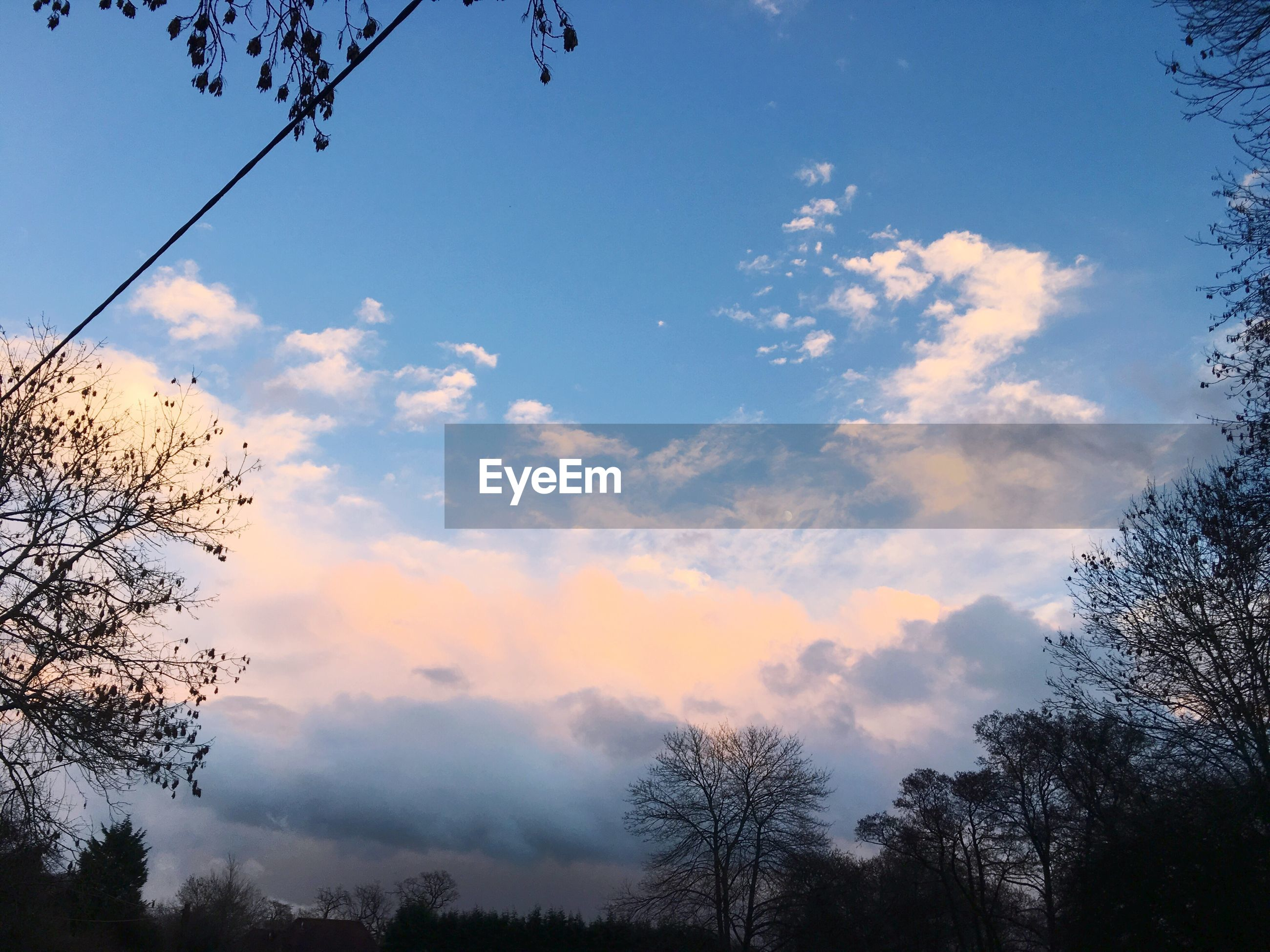 low angle view, sky, silhouette, tree, beauty in nature, tranquility, cloud - sky, scenics, nature, tranquil scene, cloud, branch, blue, sunset, bare tree, growth, outdoors, cloudy, no people, dusk