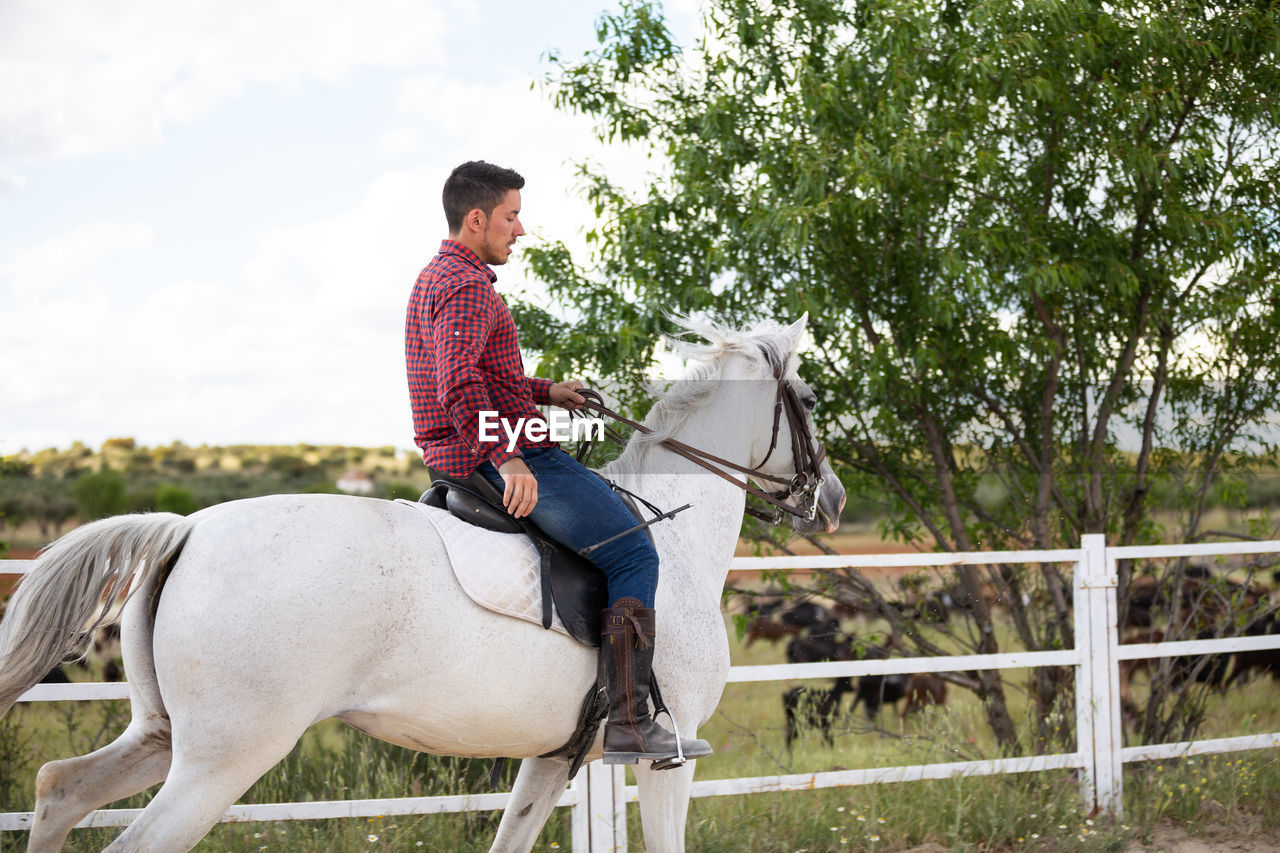 Side view of man riding horse on land