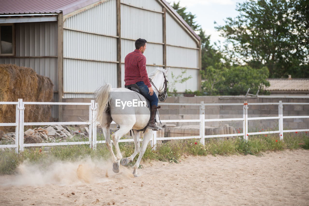 PERSON RIDING HORSE IN STABLE