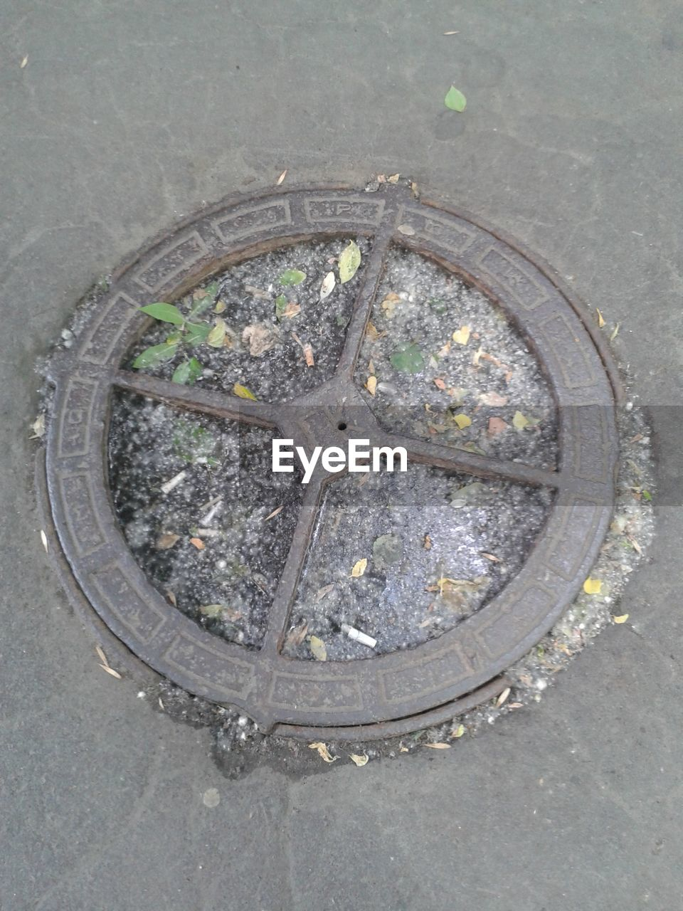 street, high angle view, outdoors, day, road, manhole, sewer, no people, sewage, close-up