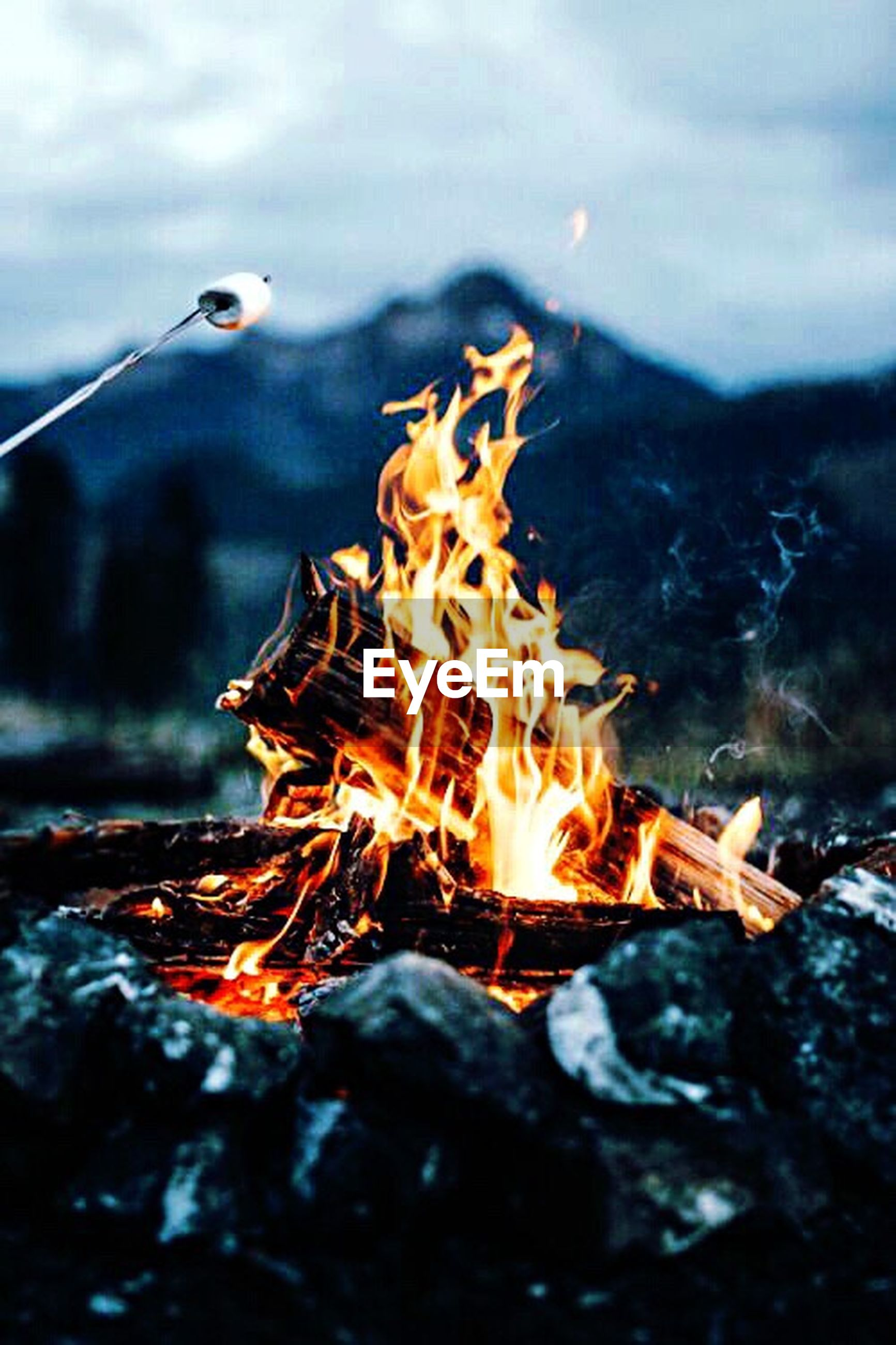 flame, fire - natural phenomenon, heat - temperature, burning, bonfire, no people, nature, outdoors, close-up, night, inferno, forest fire, fire pit