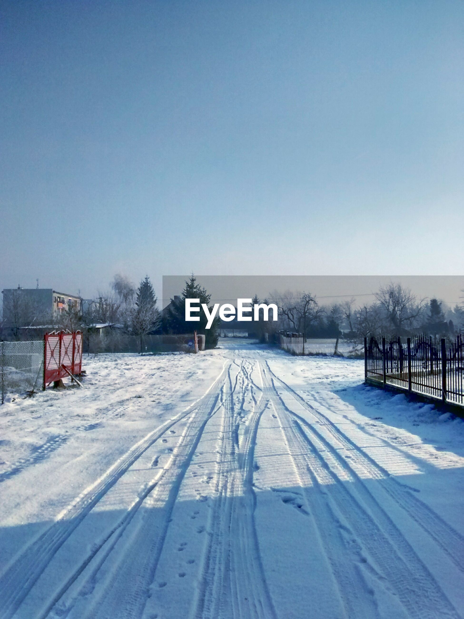 snow, winter, cold temperature, season, weather, covering, clear sky, frozen, white color, copy space, tree, the way forward, snow covered, covered, nature, transportation, landscape, tranquil scene, field, tranquility