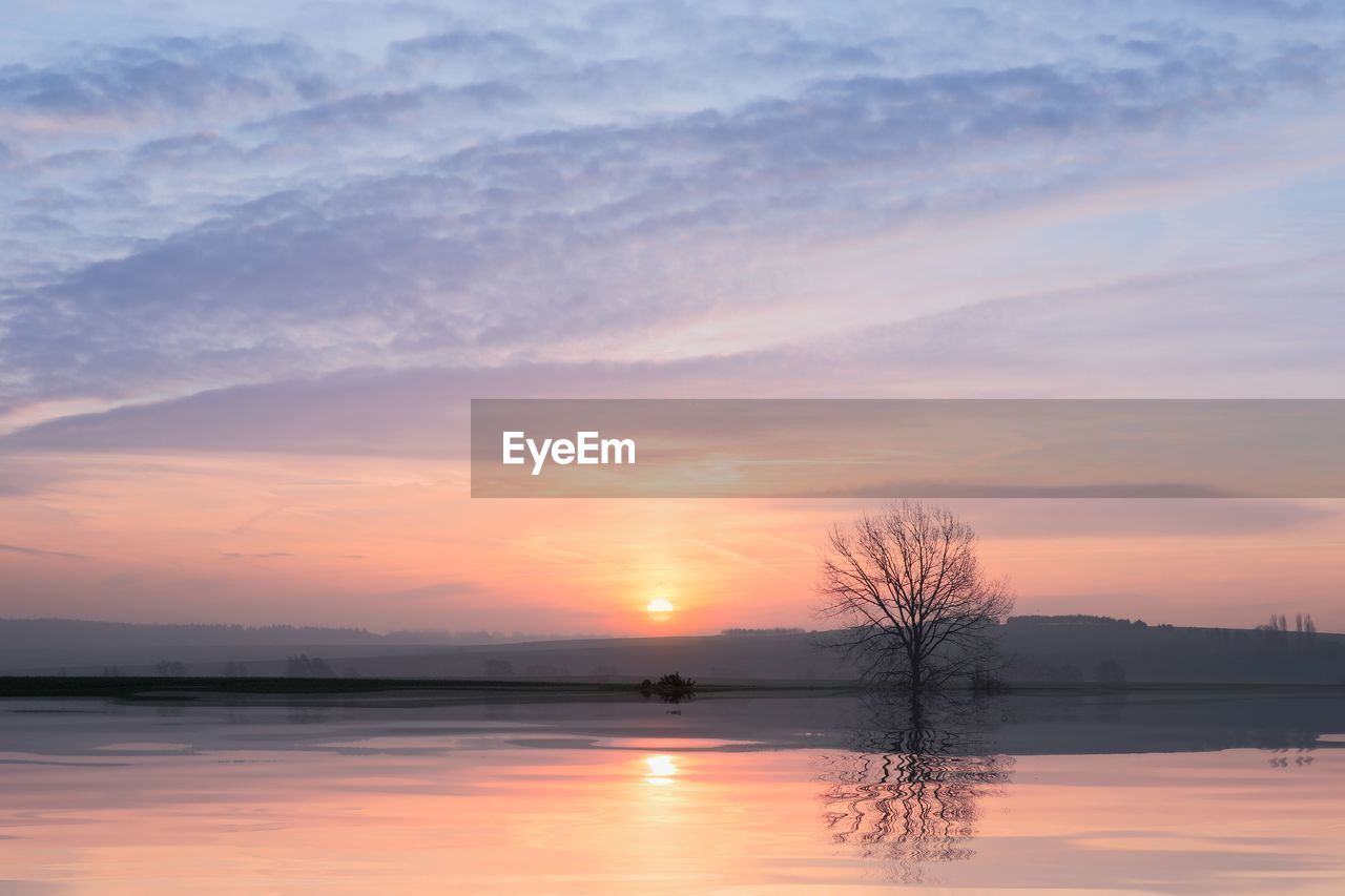 sunset, water, sky, scenics - nature, beauty in nature, tranquil scene, lake, orange color, tranquility, waterfront, reflection, cloud - sky, silhouette, non-urban scene, tree, no people, idyllic, nature, bare tree, outdoors, reflection lake