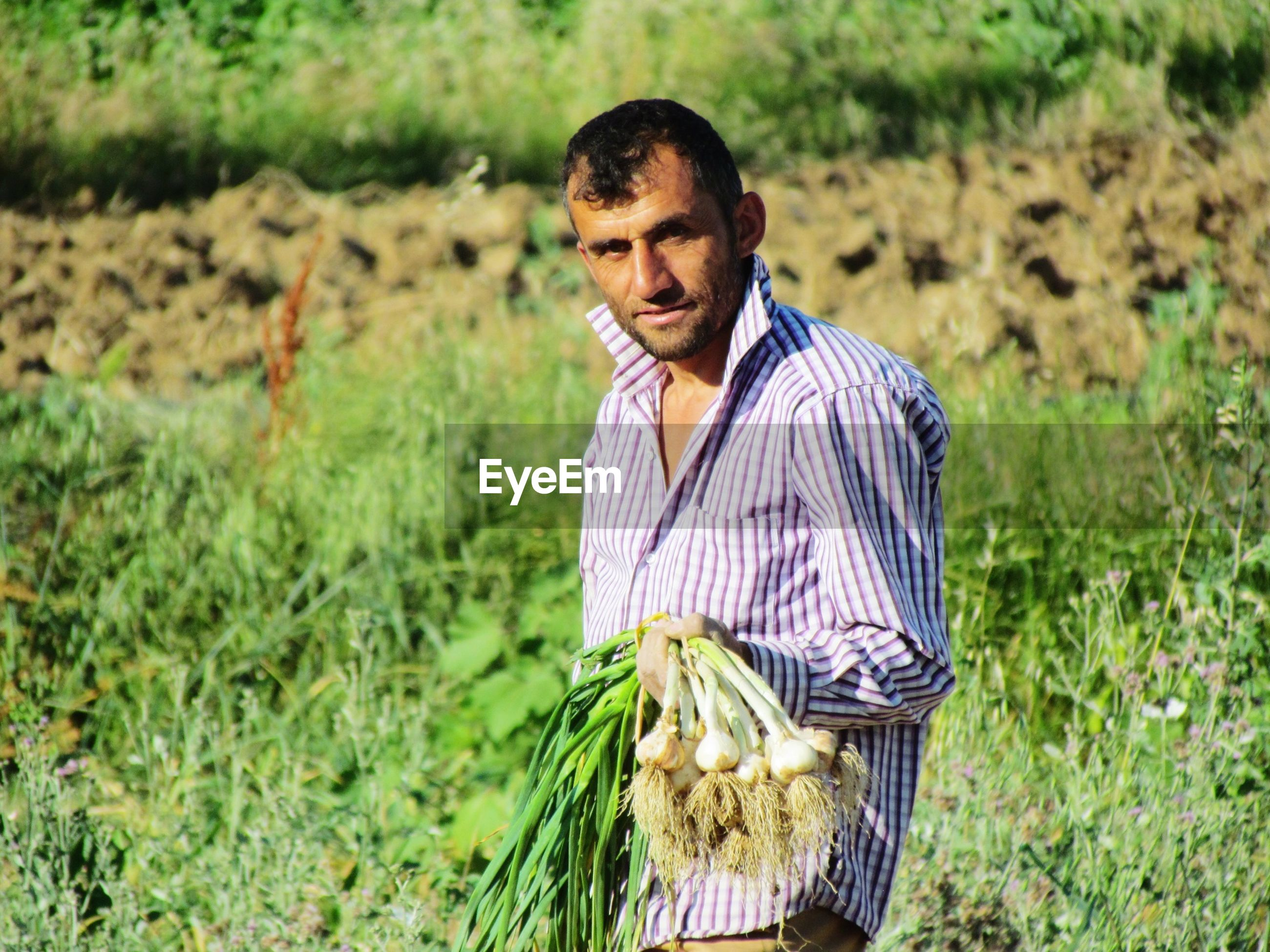Portrait of farmer holding scallions while standing at farm