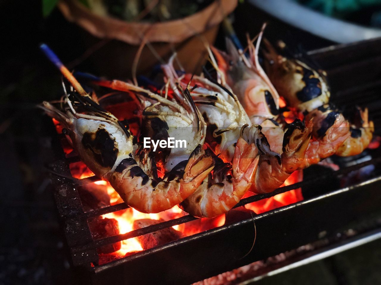 heat - temperature, food and drink, food, fire - natural phenomenon, fire, burning, flame, freshness, barbecue, seafood, barbecue grill, close-up, grilled, wellbeing, healthy eating, no people, preparation, preparing food, coal, focus on foreground, outdoors, bonfire
