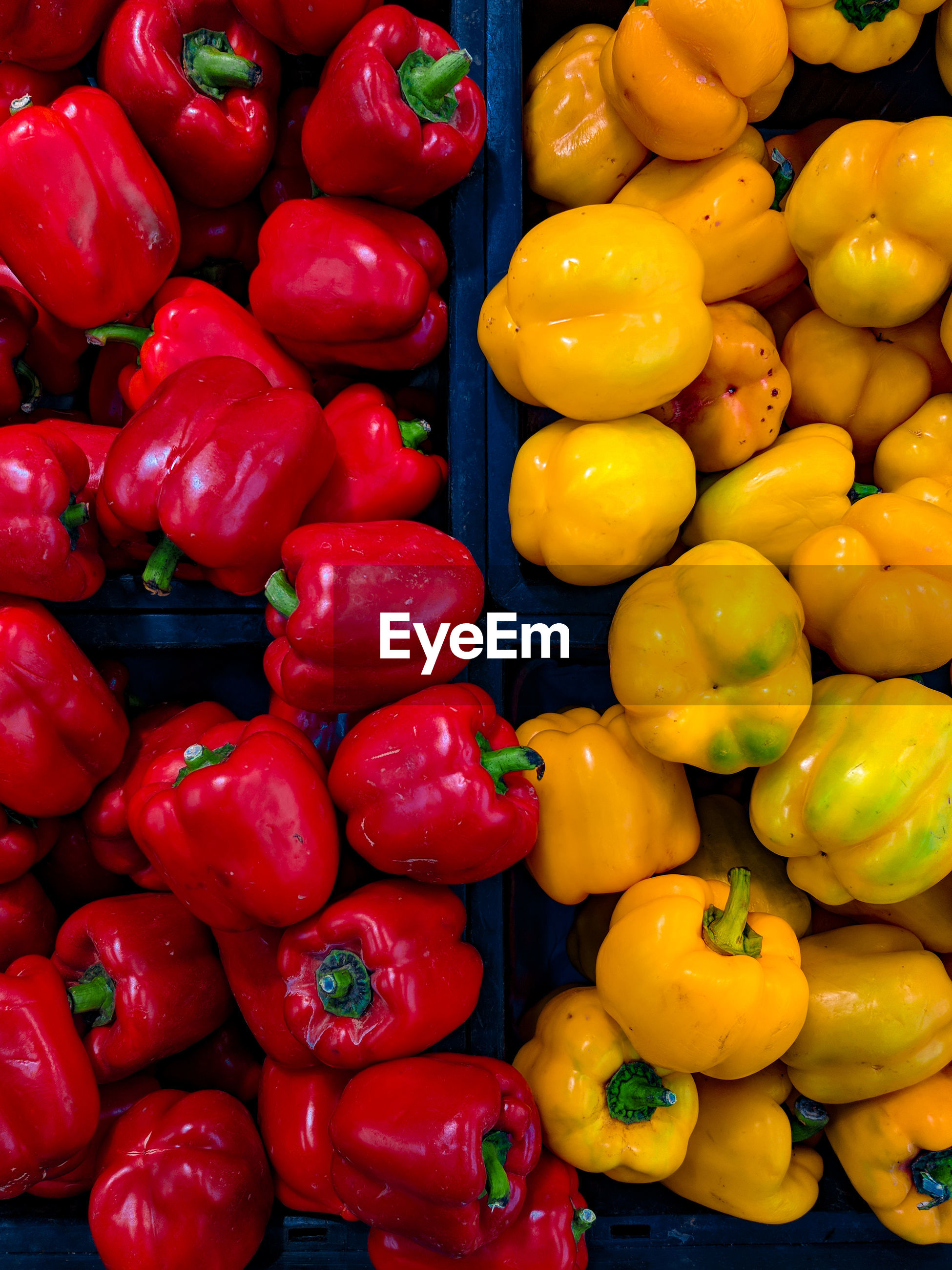 FULL FRAME SHOT OF BELL PEPPERS FOR SALE