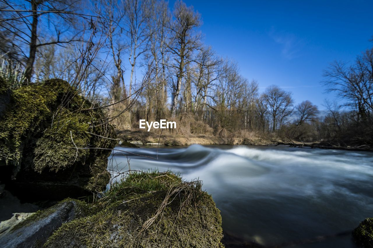 tree, nature, water, beauty in nature, tranquil scene, no people, tranquility, scenics, outdoors, day, river, bare tree, sky, clear sky, waterfall, blue, forest, growth, winter, branch, cold temperature