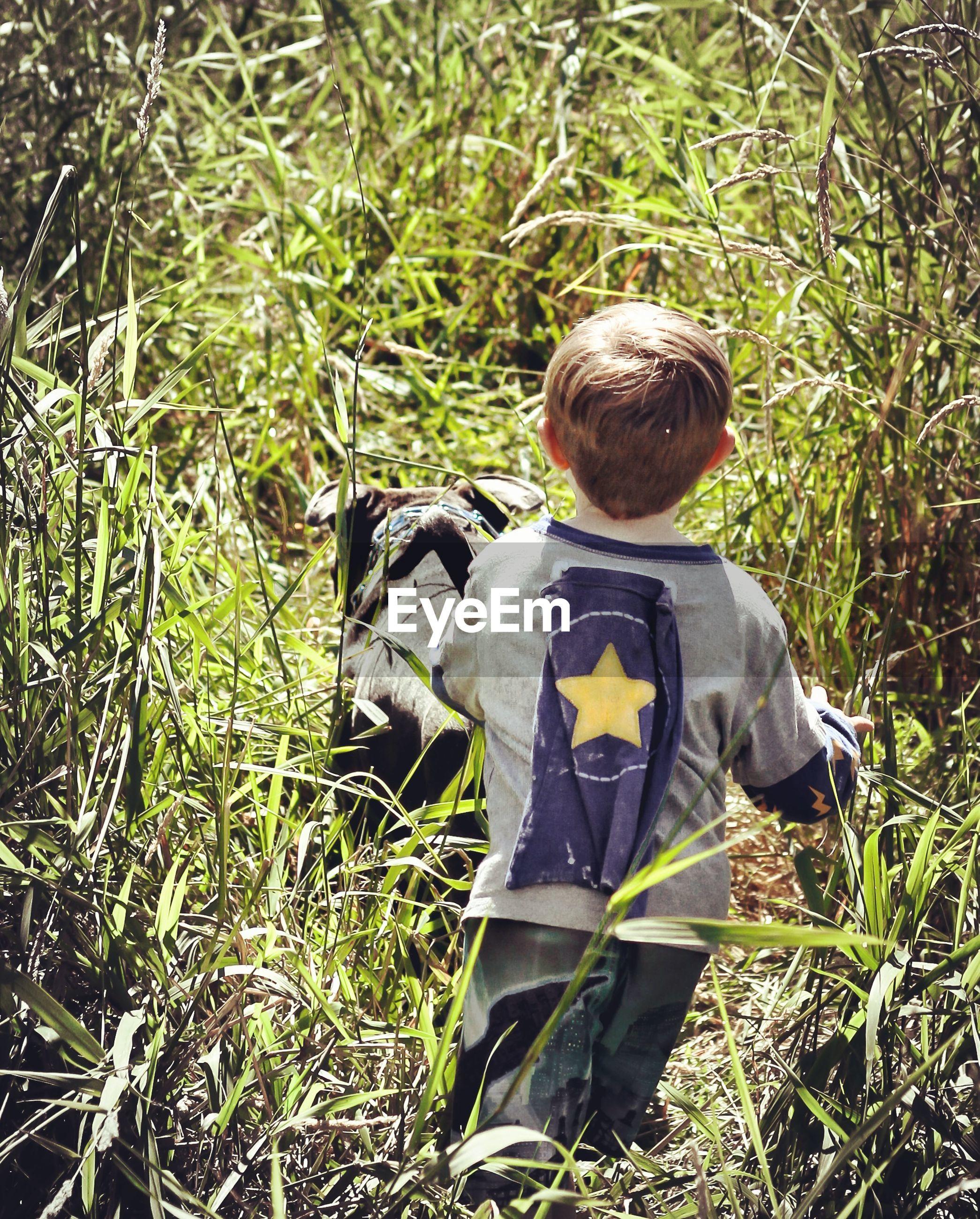 Rear view of boy walking on grassy field