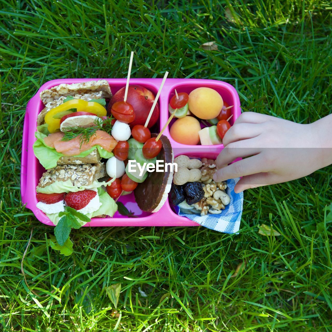 food, food and drink, human hand, hand, human body part, freshness, grass, one person, healthy eating, real people, high angle view, wellbeing, fruit, holding, vegetable, day, unrecognizable person, plant, green color, body part, finger, outdoors, lunch box