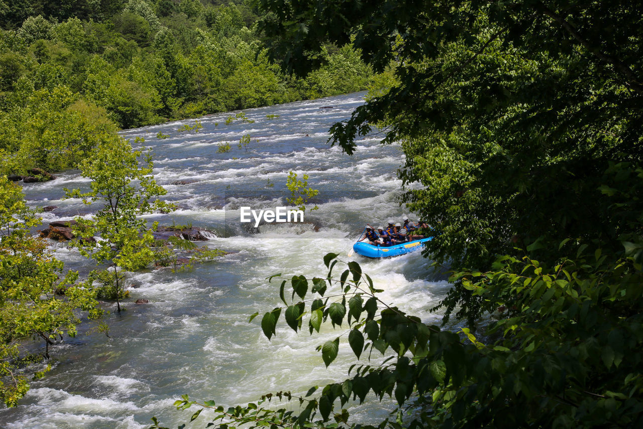 water, tree, plant, river, nature, transportation, leisure activity, beauty in nature, day, real people, adventure, motion, lifestyles, people, mode of transportation, nautical vessel, growth, forest, flowing water, inflatable, outdoors