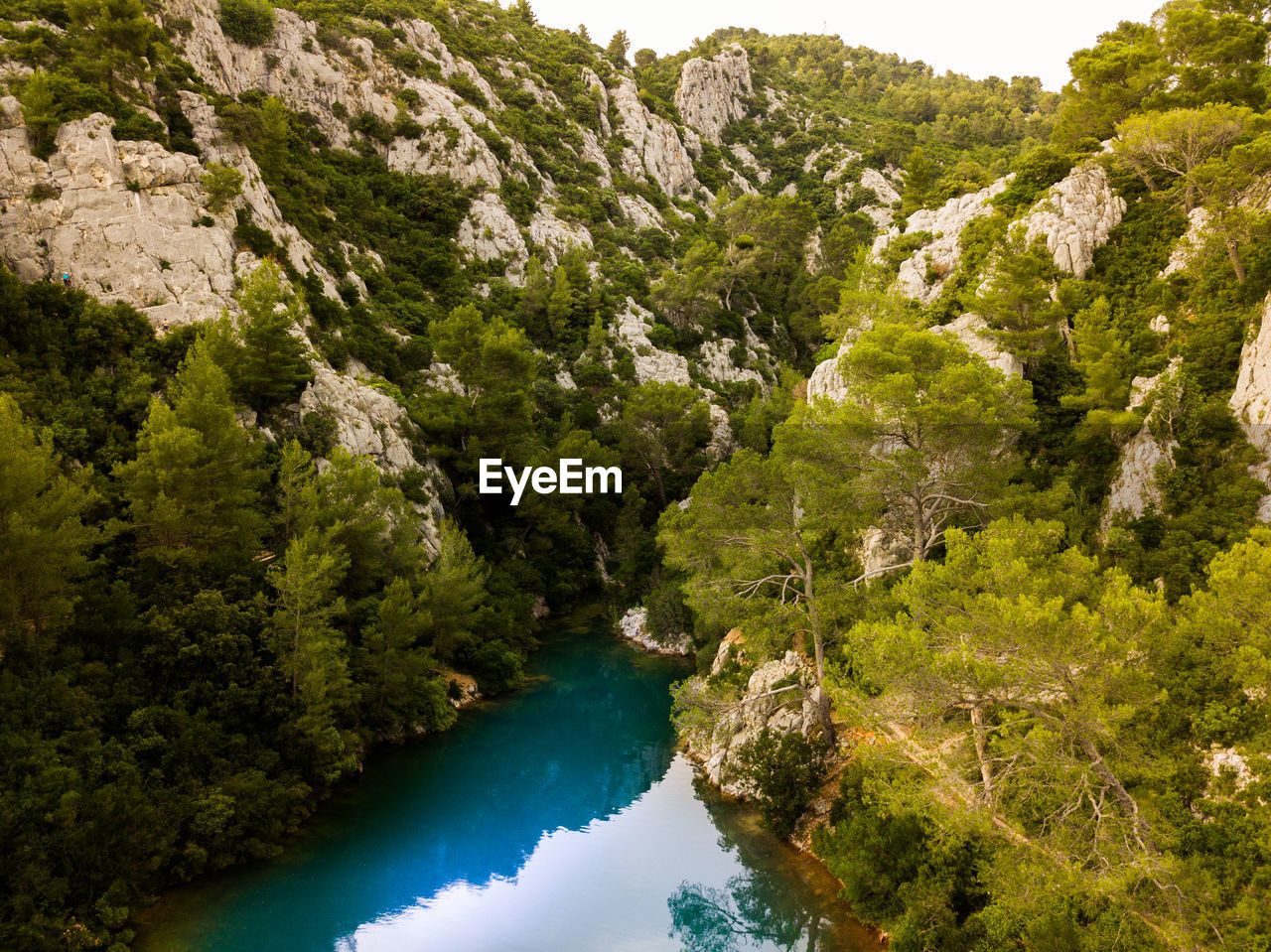 water, tree, plant, scenics - nature, beauty in nature, nature, no people, land, day, tranquility, tranquil scene, outdoors, green color, lake, rock, mountain, travel destinations, high angle view