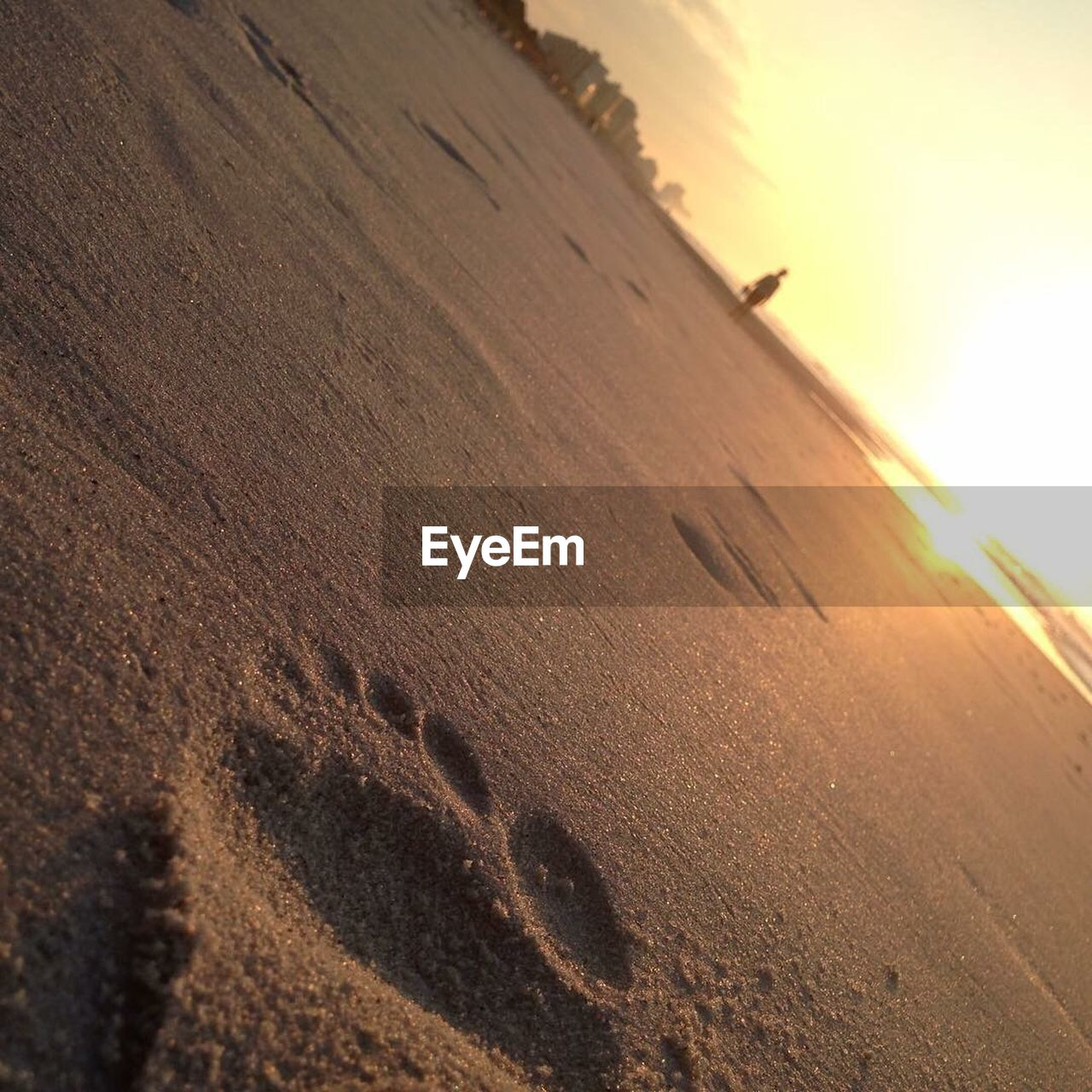 sunset, nature, outdoors, sun, no people, sand, sunlight, snow, winter, tranquility, track - imprint, cold temperature, scenics, beauty in nature, landscape, day, sky, close-up