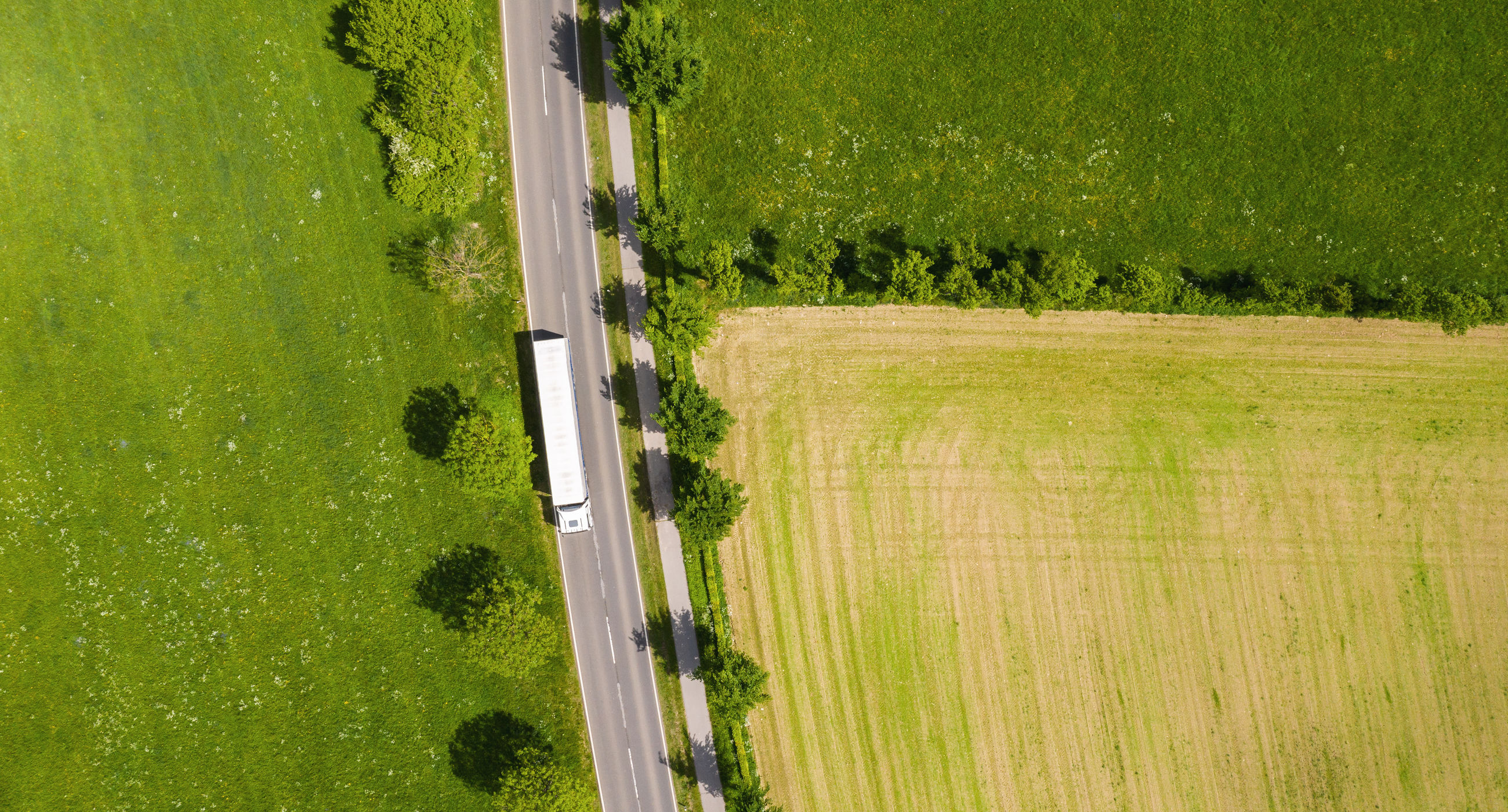 Aerial view of road amidst farm