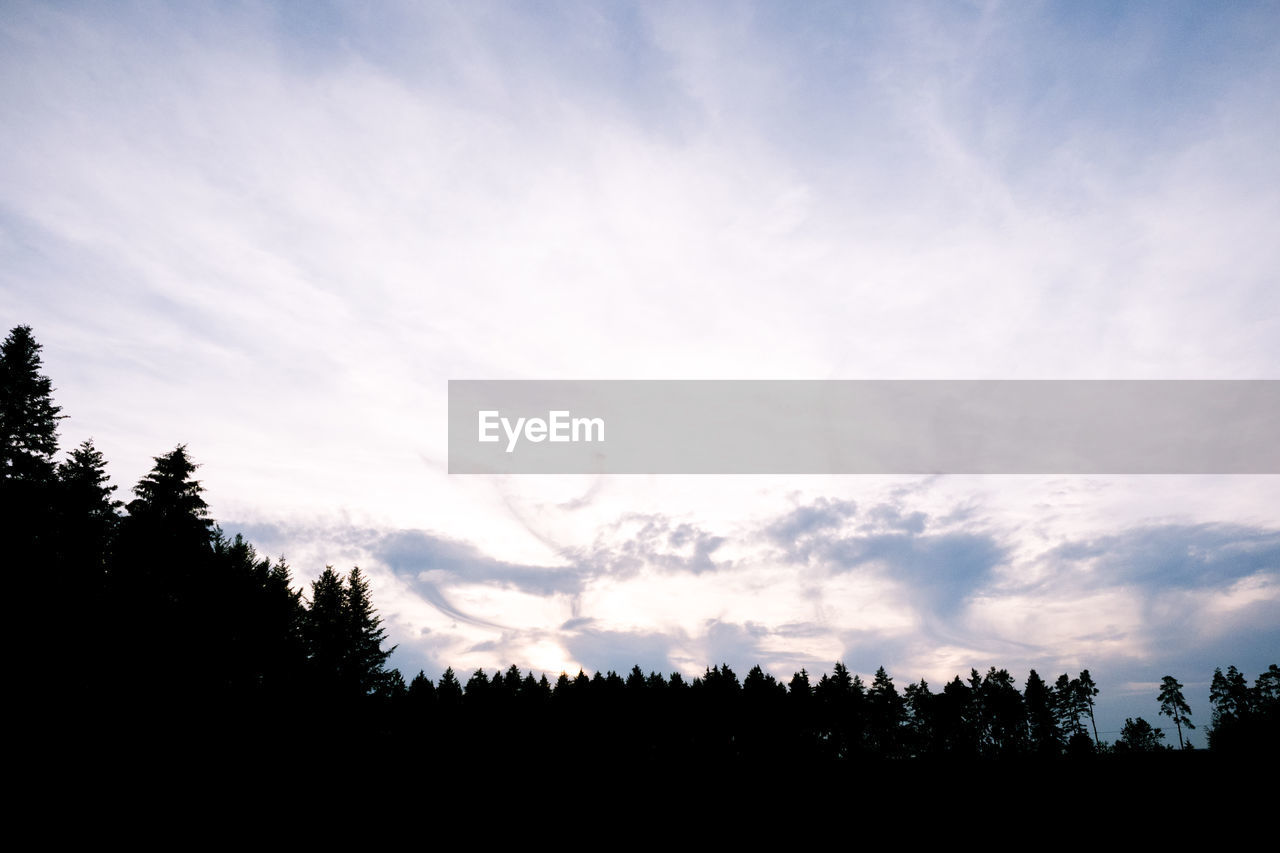 sky, cloud - sky, tree, beauty in nature, tranquility, scenics - nature, silhouette, tranquil scene, plant, nature, no people, non-urban scene, growth, landscape, environment, idyllic, low angle view, land, outdoors, sunset, coniferous tree