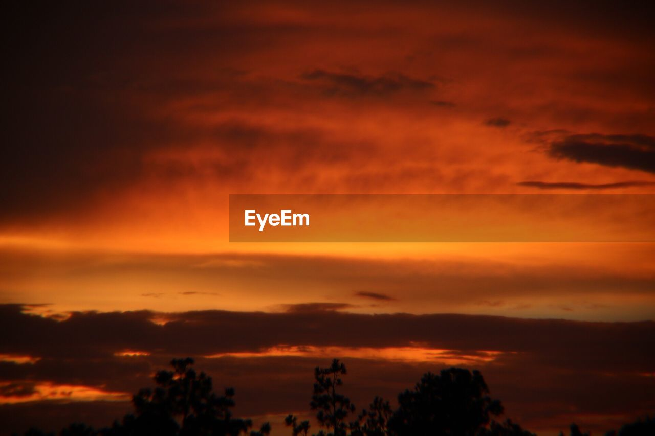 sunset, orange color, cloud - sky, silhouette, beauty in nature, sky, dramatic sky, scenics, tranquil scene, nature, atmospheric mood, tranquility, tree, no people, outdoors, storm cloud, day