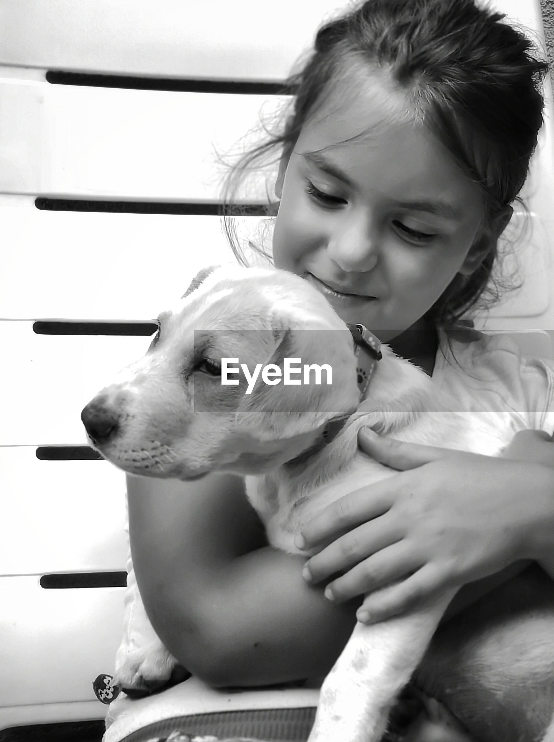 Close-up of cute girl holding dog