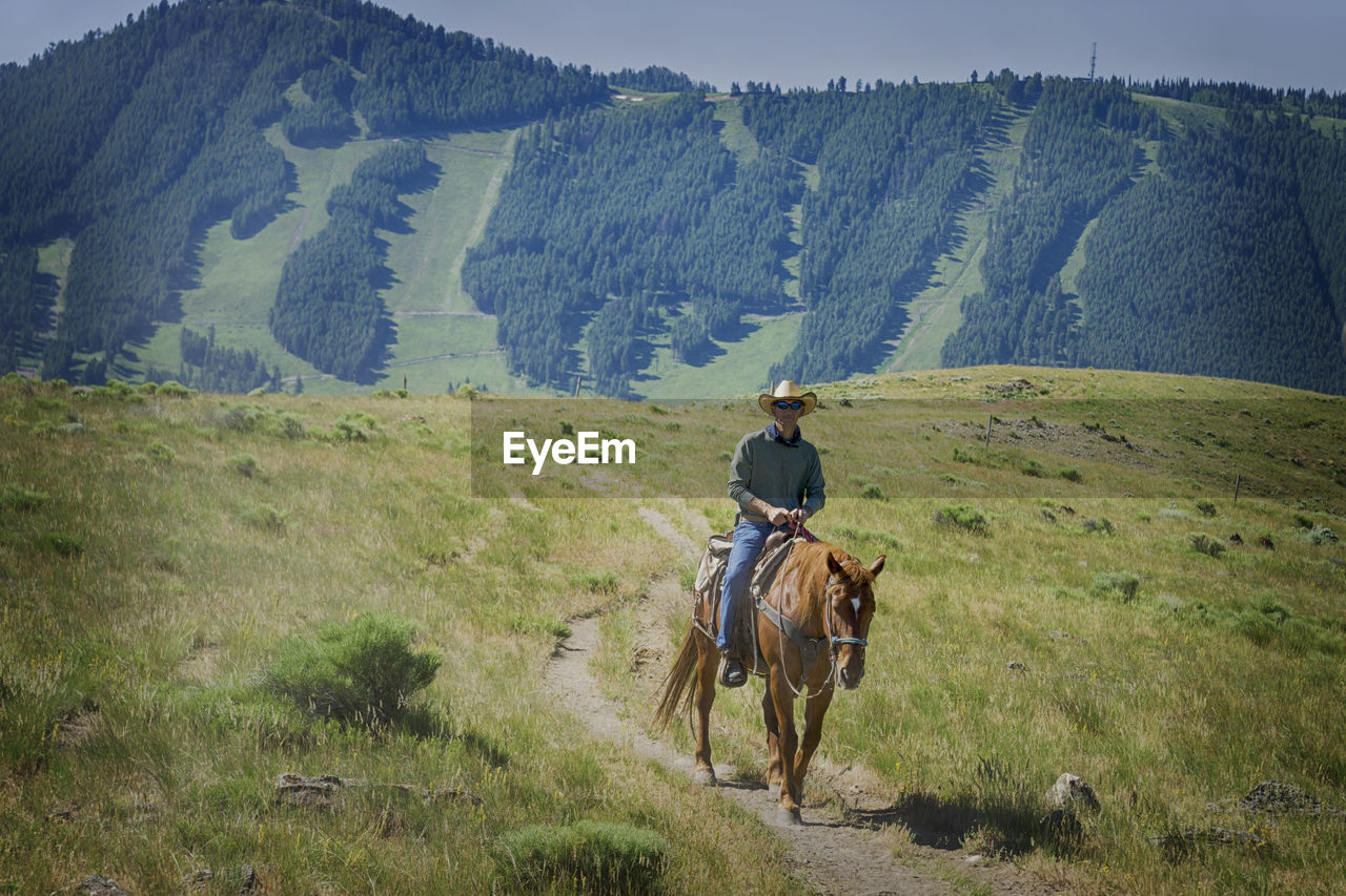 Cowboy Riding Horse On Field Against Mountain