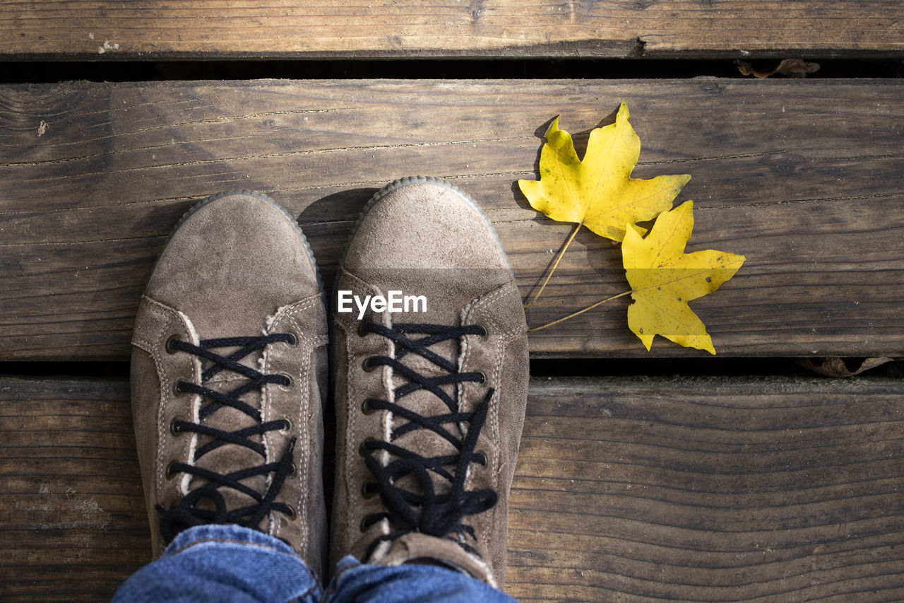 human body part, personal perspective, yellow, real people, one person, wood - material, low section, body part, leaf, human leg, shoe, lifestyles, plant part, jeans, close-up, high angle view, indoors, unrecognizable person, directly above, leisure activity, wood, human foot, change, maple leaf, leaves