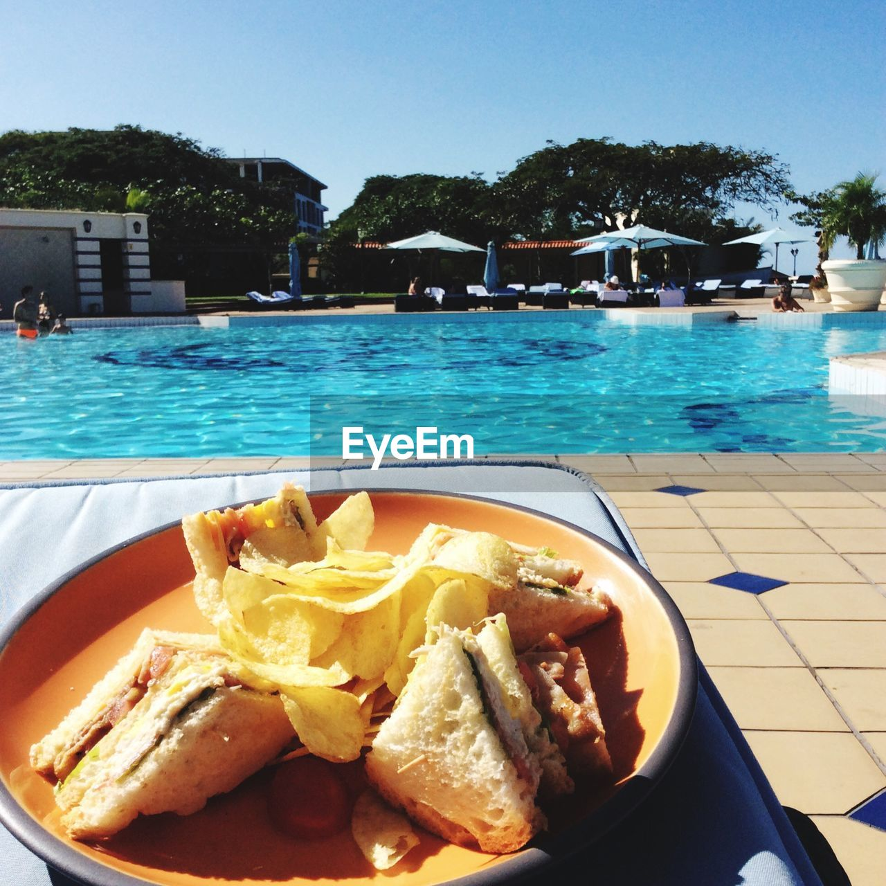 Close-up of sandwich against pool