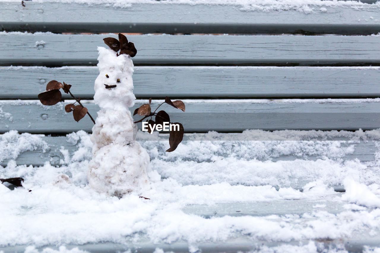 Close Up Of Snowman