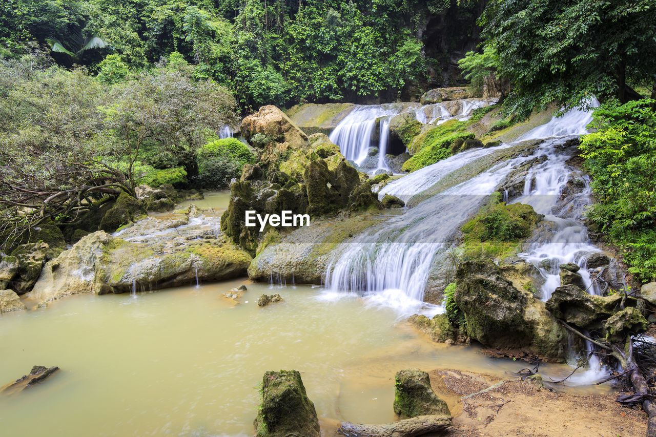 plant, water, waterfall, tree, scenics - nature, beauty in nature, forest, motion, rock, rock - object, flowing water, nature, long exposure, solid, land, environment, flowing, river, outdoors, no people, rainforest, stream - flowing water, power in nature, purity