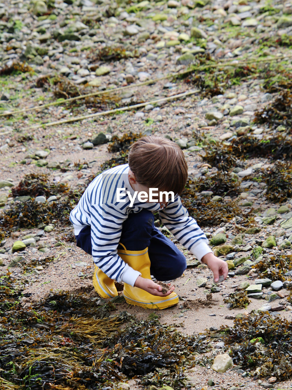 High angle view of boy on the shore collectiong stones