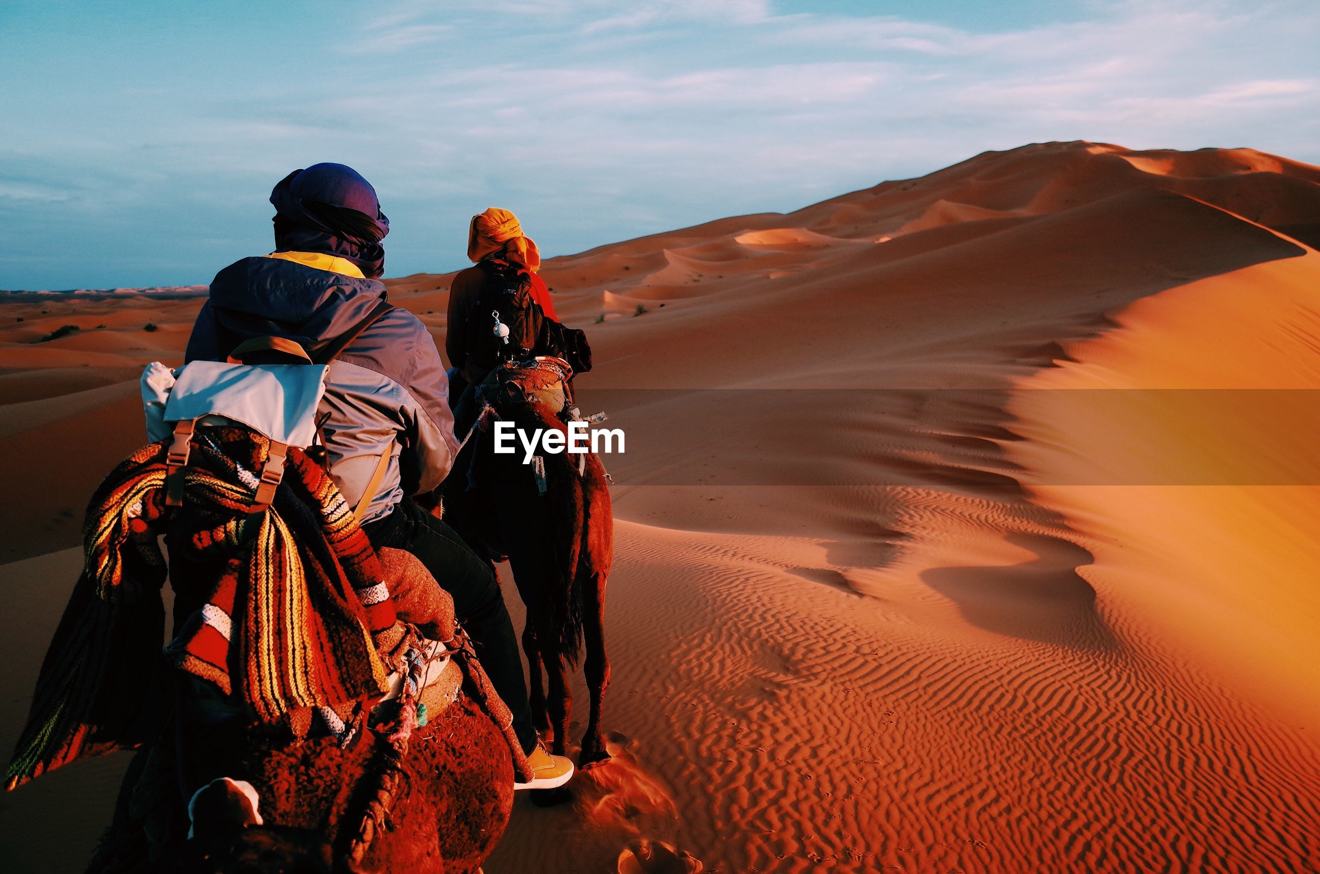Rear view of people in desert