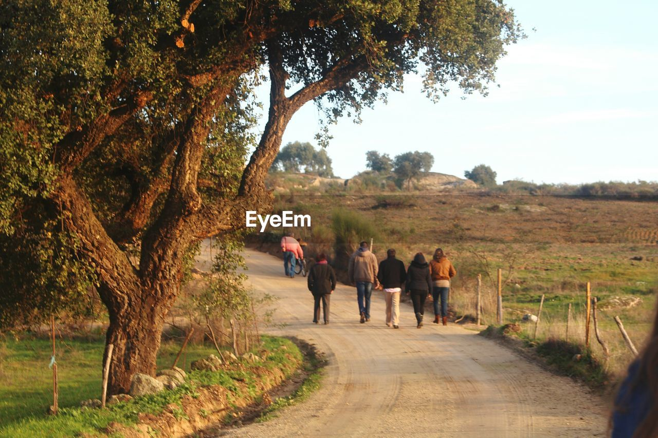 Rear view of friends walking on road by trees at field