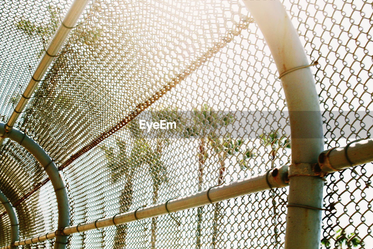 Low angle view of palm trees seen through chainlink fence