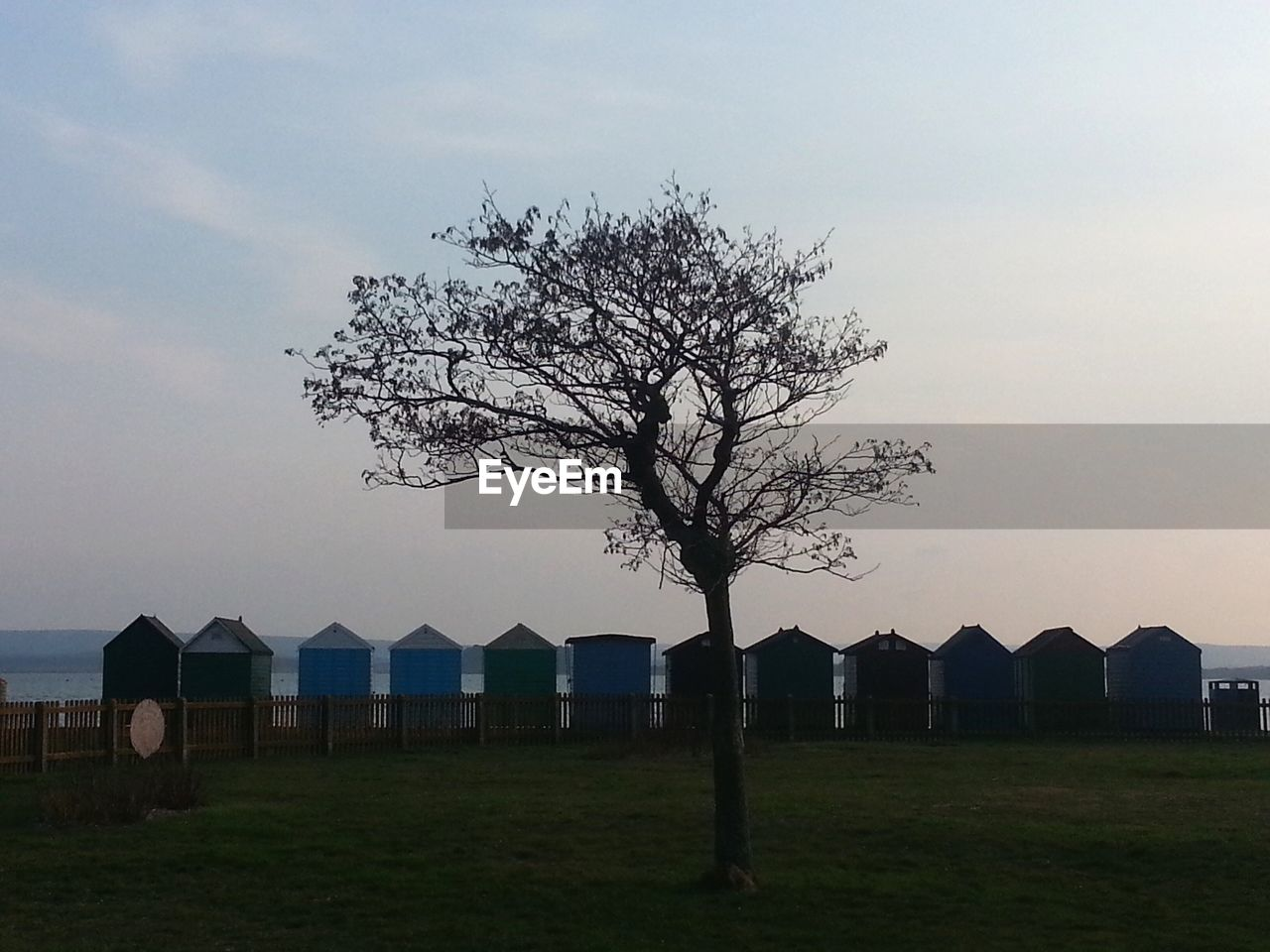 sky, tree, no people, outdoors, built structure, nature, beauty in nature, day