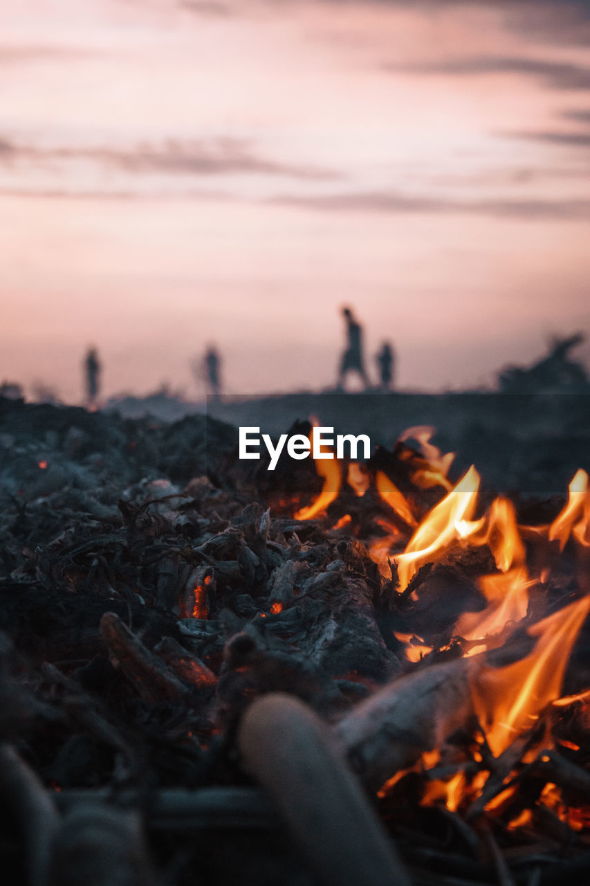 burning, heat - temperature, fire, fire - natural phenomenon, flame, orange color, bonfire, nature, sky, sunset, wood - material, wood, log, firewood, motion, close-up, glowing, environment, land, campfire, outdoors