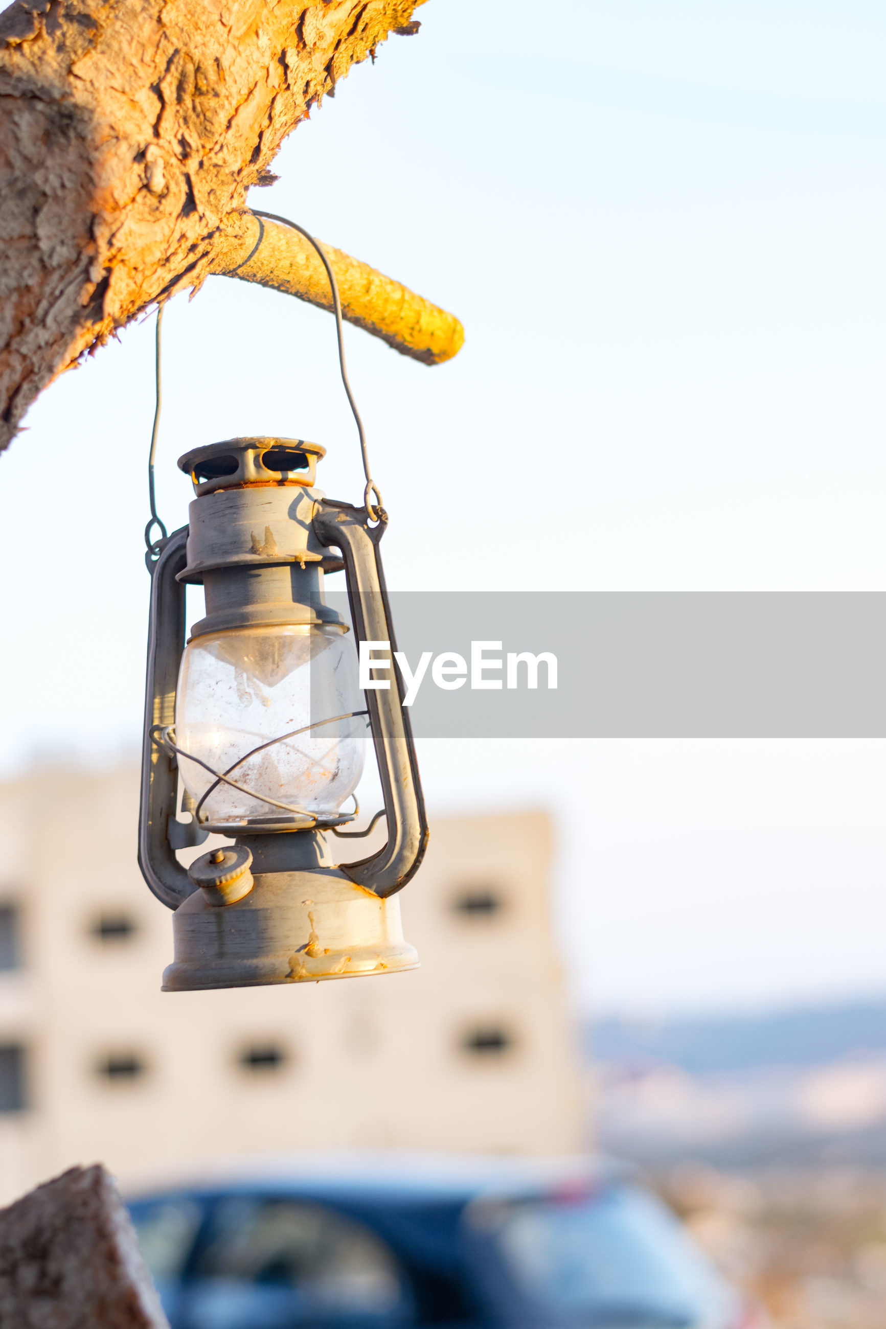 Old-fashioned lantern hanging from tree