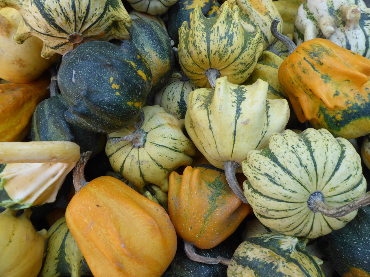 wellbeing, healthy eating, food and drink, food, pumpkin, freshness, full frame, market, backgrounds, retail, large group of objects, no people, abundance, day, market stall, for sale, squash - vegetable, vegetable, high angle view, still life, outdoors