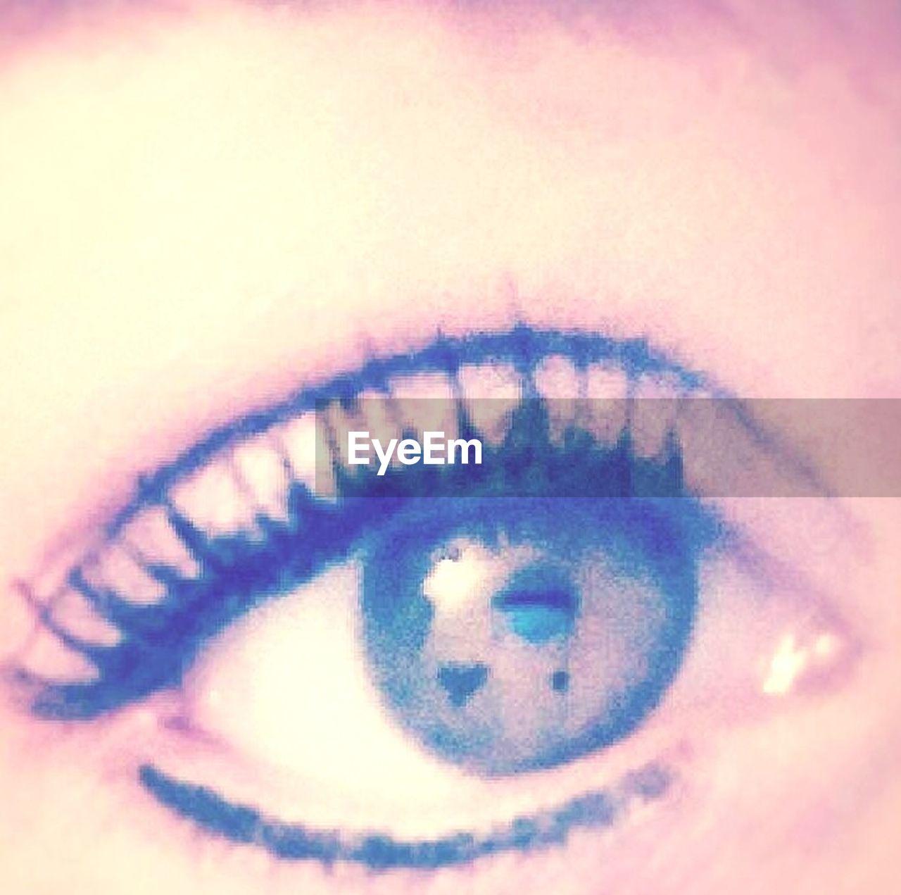 eyelash, human eye, human body part, sensory perception, eyesight, eyeball, macro, iris - eye, one person, close-up, real people, human skin, eyebrow, outdoors, day, adult, people