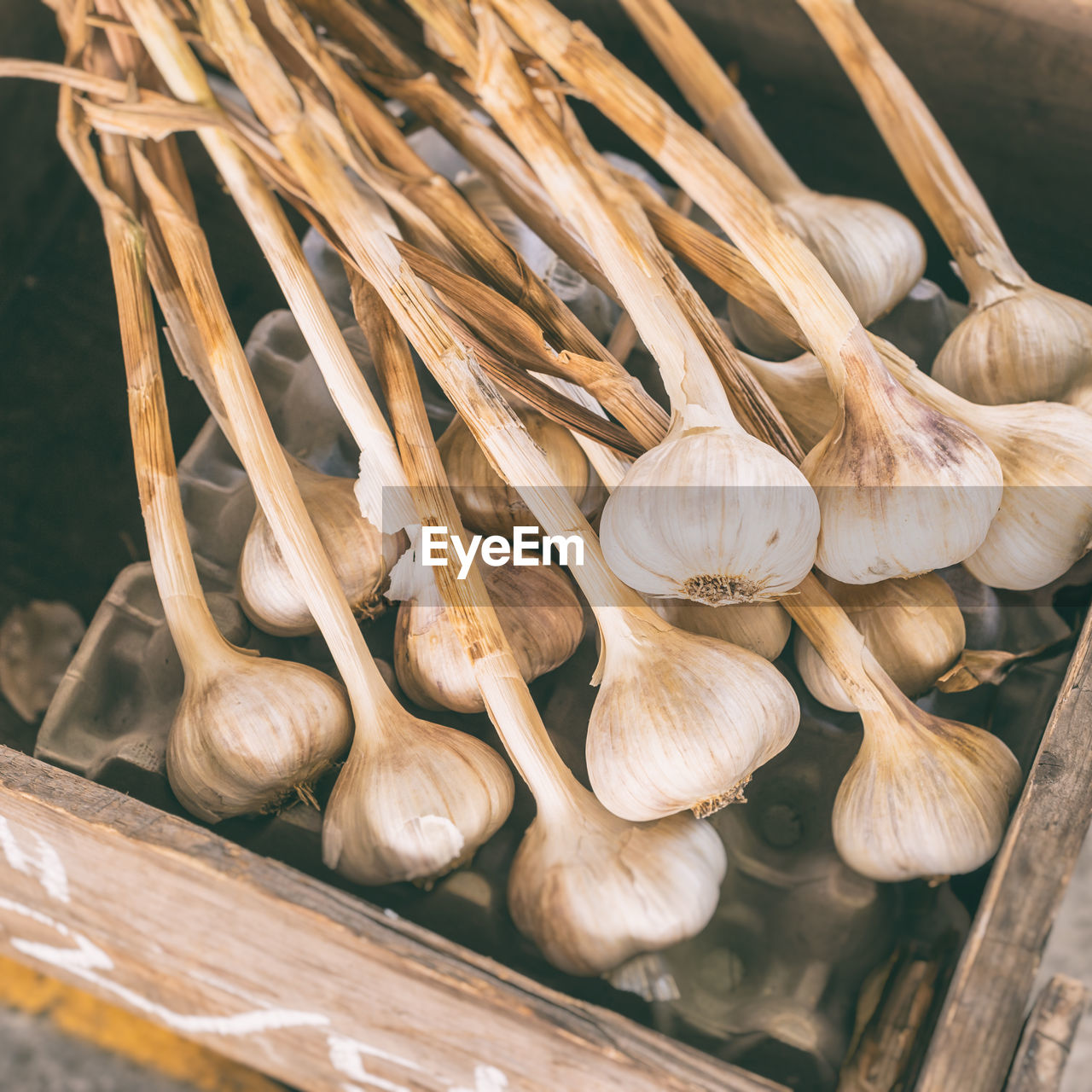 Close-Up Of Garlic For Sale