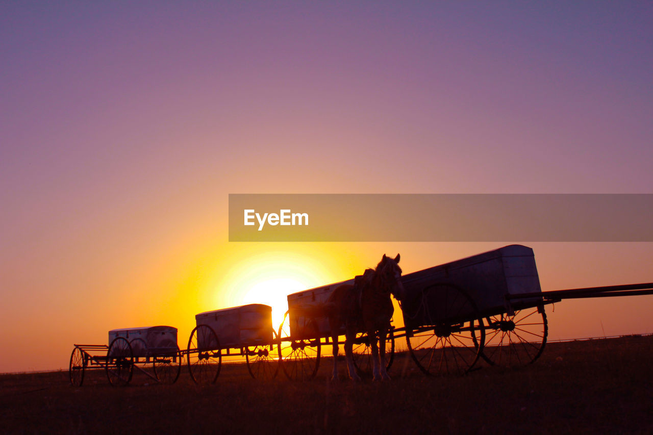 Silhouette horse by carts against sky during sunset