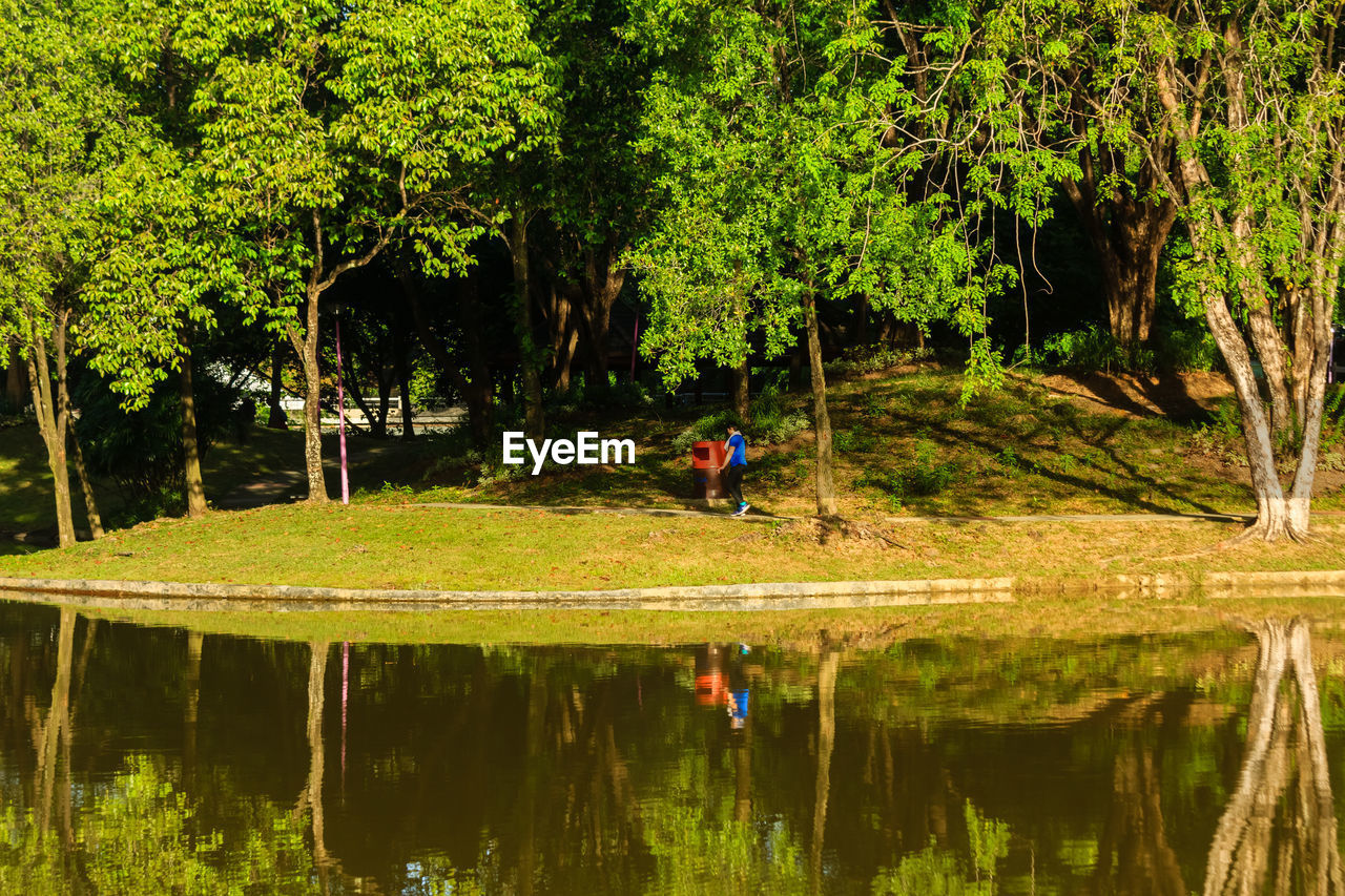 reflection, tree, water, plant, lake, nature, waterfront, real people, tranquility, green color, leisure activity, beauty in nature, one person, day, growth, lifestyles, tranquil scene, men, outdoors